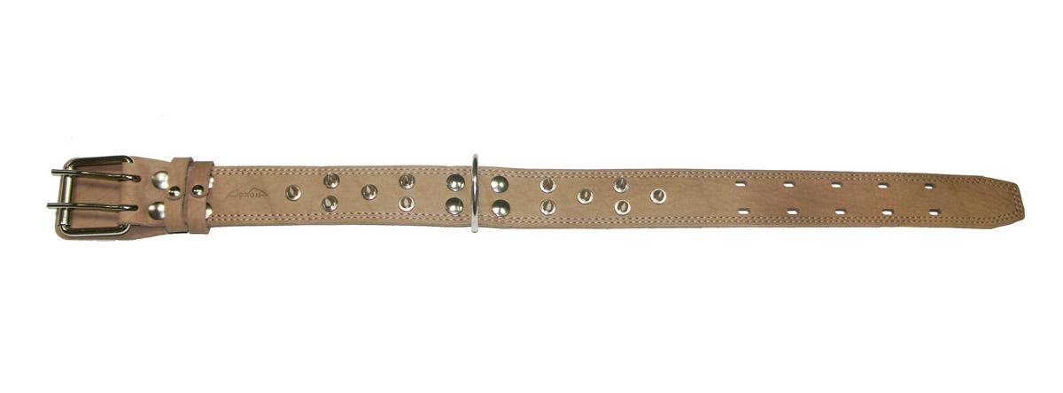 Ошейник Аркон Стандарт, с шипами, цвет: бежевый, ширина 4,5 см, длина 69 смо45/2сшОшейник Аркон Стандарт, декорированный металлическими шипами, изготовлен из кожи, устойчивой к влажности и перепадам температур. Клеевой слой, сверхпрочные нити, крепкие металлические элементы делают ошейник надежным и долговечным. Изделие отличается высоким качеством, удобством и универсальностью. Размер ошейника регулируется при помощи пряжки, зафиксированной на одном из 5 двойных отверстий. Минимальный обхват шеи: 46 см. Максимальный обхват шеи: 62 см. Ширина: 4,5 см.