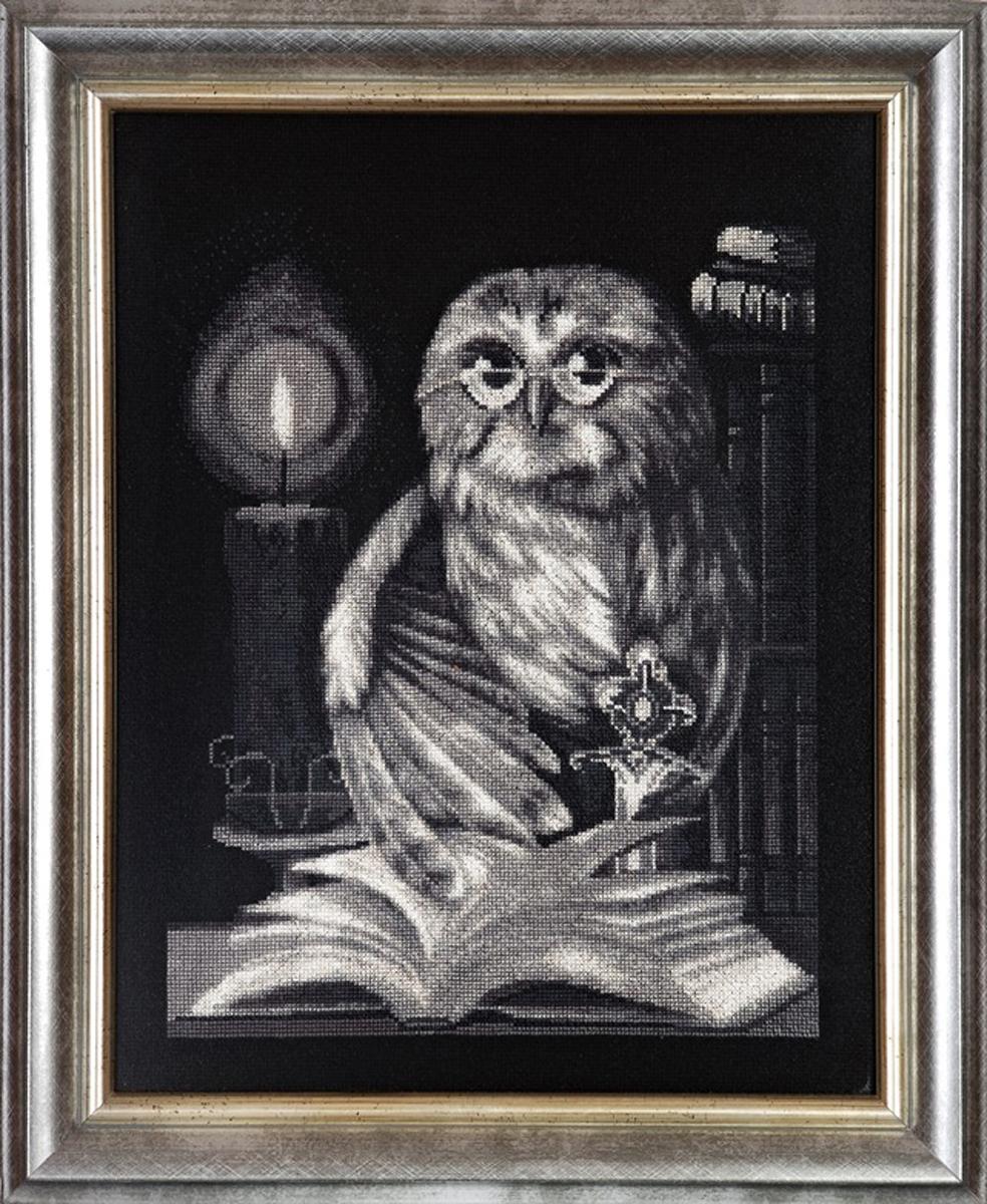 Набор для вышивания Alisena Хранитель библиотеки, 24 x 30 см488066