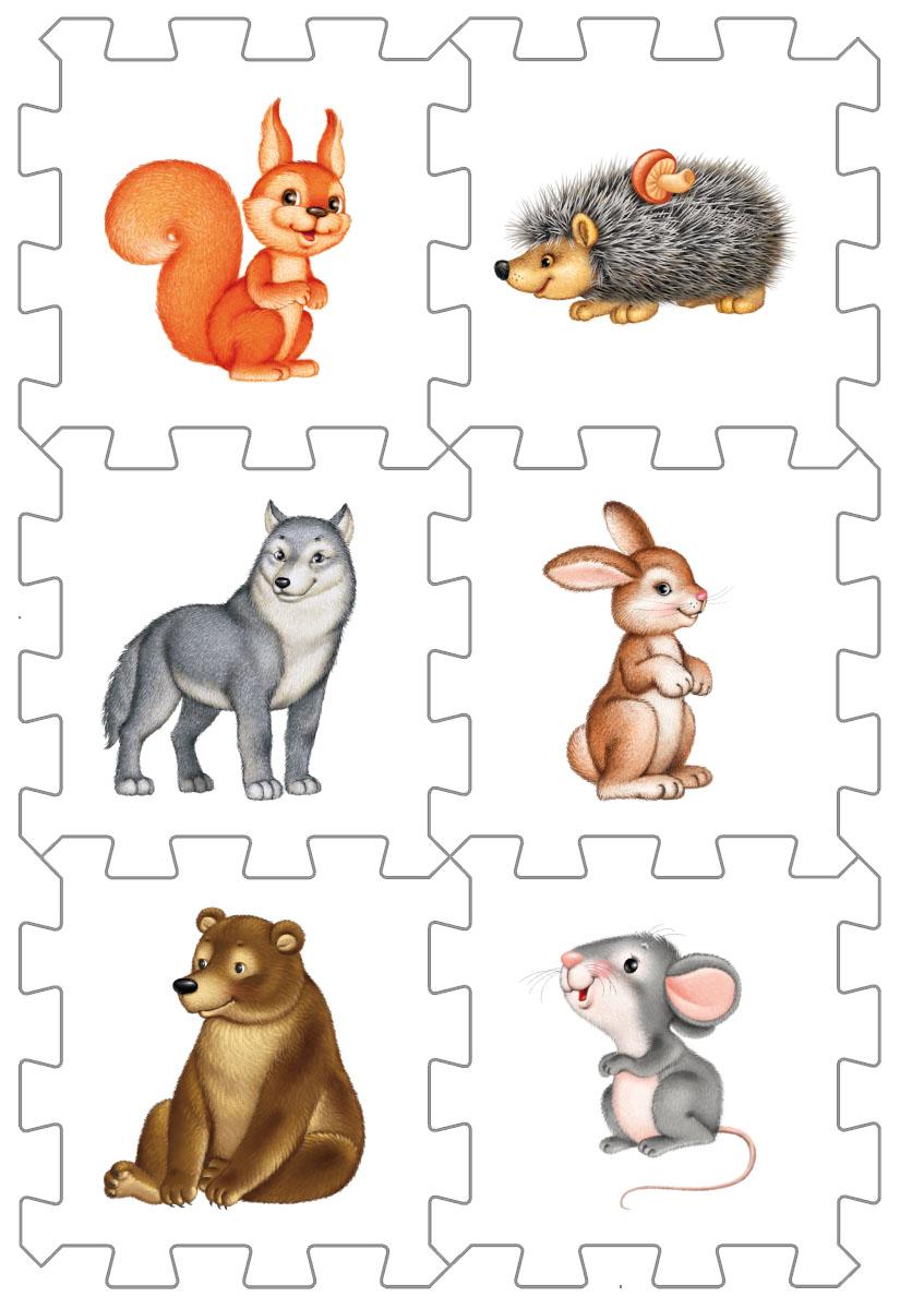 Робинс Пазл Кубик Лесные животные4607058376574Набор состоит из 6 больших деталей-пазлов, которые можно собрать в объёмный кубик. Собирая кубик и играя с этими деталями-пазлами, малыши тренируют мелкую моторику, развивают мышление, память, внимание, а также получают навыки творческого конструирования. Детали-пазлы сделаны из экологически чистого и гипоаллергенного материала ЭВА (EVA), который не имеет цвета, запаха и вкуса, а значит, идеально подходит для первых развивающих игрушек и игр для самых маленьких детей. В чём его особенности: • детали-пазлы можно грызть, мять, гнуть, сжимать и мочить, и при этом они не испортятся; • с набором можно играть в ванной, детали плавают в воде и легко крепятся к кафелю и стенкам ванной; • уникальная технология печати картинок на пазлах передаёт все оттенки цветов, и дети быстрее учатся узнавать нарисованные на них предметы в окружающем мире; • набор идеально подходит для развития детской моторики, сенсорики, навыков конструирования; • детали-пазлы из разных наборов подходят к друг другу,...