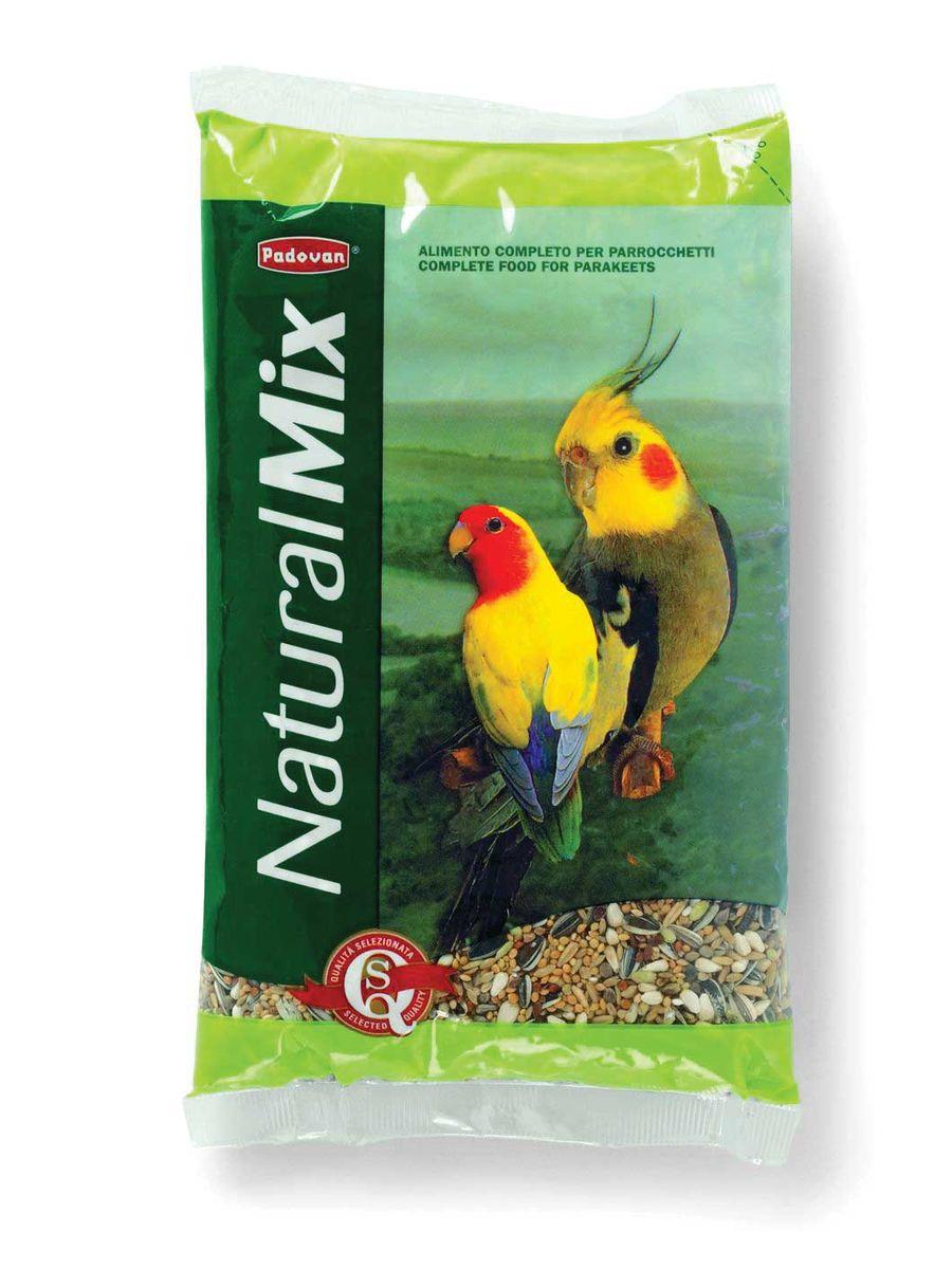 Корм Padovan Naturalmix Parrocchetti для средних попугаев, 850 г16800Специально подобранная смесь из просеянных и провеянных семян и зерен, отобранных и смешанных в пропорциях, для круглогодичного питания средних попугаев. Состав: белое, красное и жёлтое пшено - 27,7%, Семена подсолнечника - 18,33% канареечное семя - 11.7%, овёс шелушёный - 16%, льняное семя - 6%, Итальянское просо - 6%.