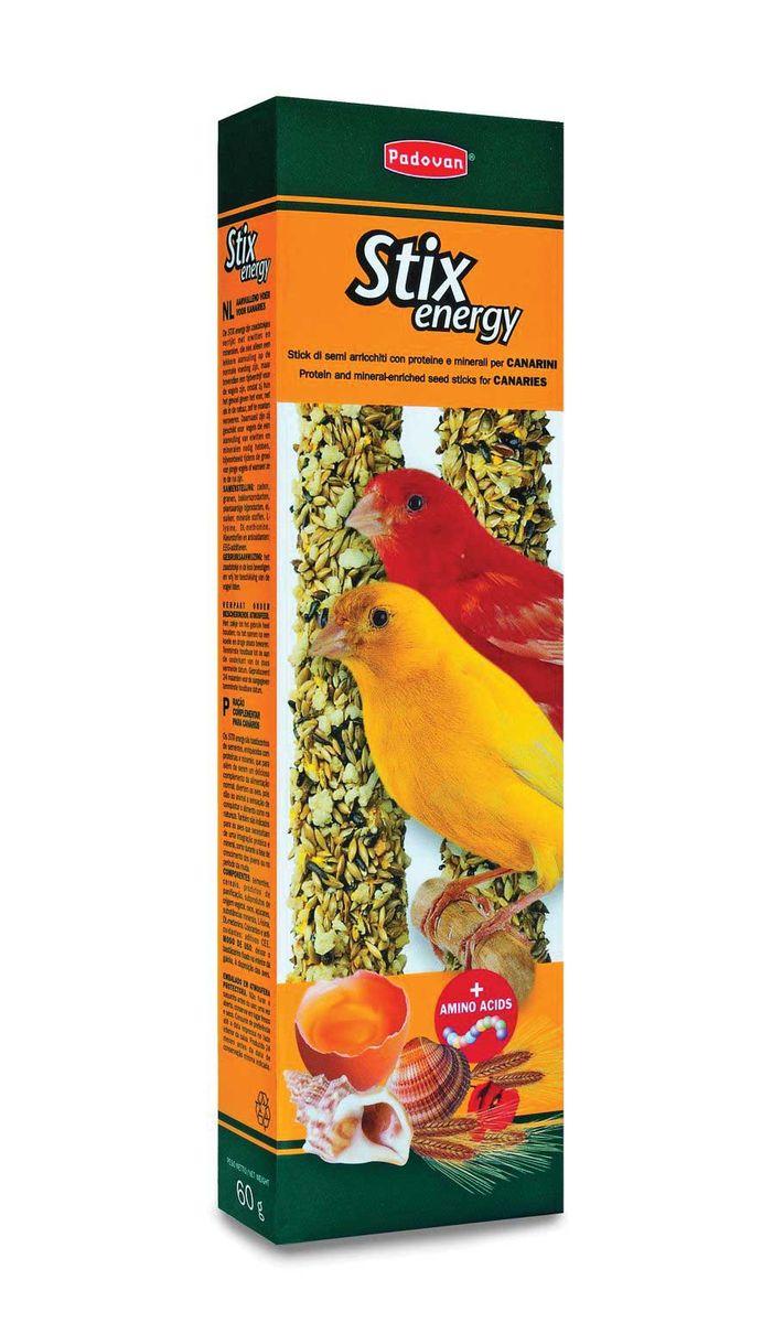 Палочки Padovan Повышение энергичности для канареек, 2 х 60 г16802Лакомство - две аппетитные палочки, спрессованные из тщательно подобранной смеси разнообразных семян и полезных пищевых добавок – особенно, минералов. Предназначено для канареек. Пригодно для питания и других птиц. Снабжены приспособлением для удобного крепления лакомства внутри клетки. Состав: канареечное семя, льняное семя, масличный нуг (гвизоция абиссинская), печенье: пшеничная мука, дрожжи, пищевые красители, яйцо, аминокислоты, минералы, консерванты, натуральные вкусовые добавки.