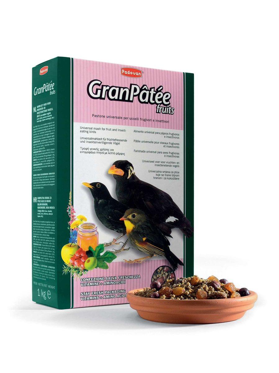 Корм Padovan GranPatee fruits для насекомоядных птиц, с фруктами, 1 кг16829Комплексный высококачественный полнорационный корм, богатый фруктами и ягодами, с витаминами, минералами и аминокислотными добавками для плодоядных и насекомоядных птиц. Делает более ярким оперенье и стимулирует певческие способности приманных и певчих птиц. Состав: растительная мука: кукуруза, ячмень, соя, пшеница, подсолнечник, изюм, можжевеловые ягоды, яблоко, лярд (свиное сало), конопляные семя (1.78%), мёд, растительное масло, натуральные вкусовые добавки, антиоксиданты, консерванты, витамины, DL-метионин, L- лизин.