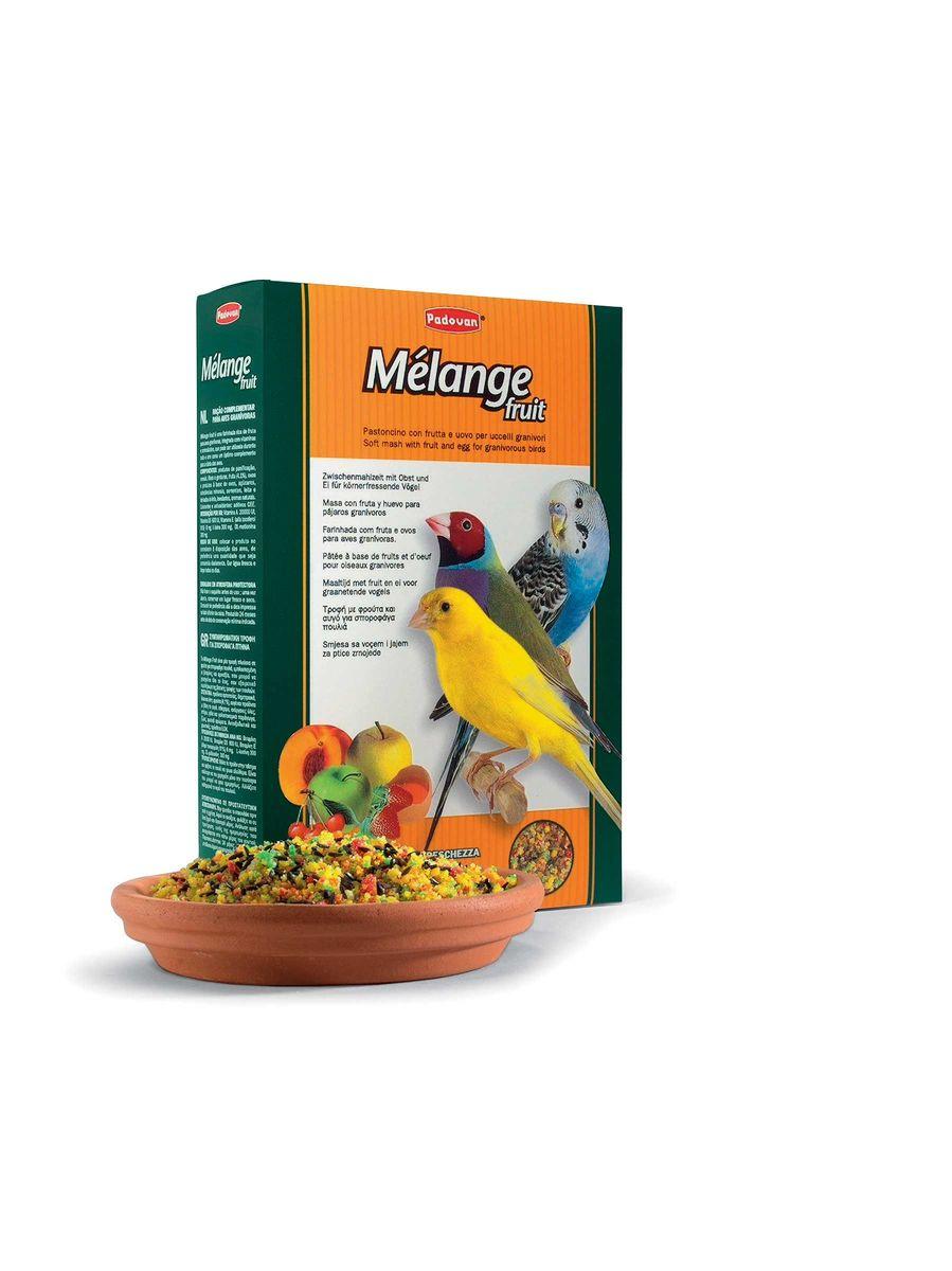 Корм Padovan фруктово-яичный Melange fruit дополнительный, для декоративных птиц, мягкий при линьке, 300 г16882Дополнительный пюреобразный, дающий энергию корм. Отлично подходит для выкармливания птенцов и при линьке взрослых зерноядных птиц (канареек, волнистых попугаев, экзотических птиц). Обогащен фруктами и ягодами. Состав: пшеничная мука 19,89%, печенье 45.27%: пшеничная мука, дрожжи, соль, фрукты 4.1%: яблоко, абрикос, ягоды, вишня, яйцо, лярд (свиной жир - 8.92%), масличный нуг (гвизоция абиссинская), минералы, глюкоза, декстроза, растительное масло, красители, антиоксиданты, натуральные вкусовые добавки, витамины, DL-метионин 200 мг/кг, Л-лизин 200 мг/кг.