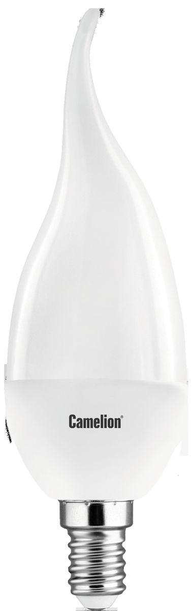Лампа светодиодная Camelion, теплый свет, цоколь Е14, 7W. 1207512075Светодиодная лампа Camelion - это инновационное решение, разработанное на основе новейших светодиодных технологий (LED) для эффективной замены любых видов галогенных или обыкновенных ламп накаливания во всех типах осветительных приборов. Она хорошо подойдет для создания рабочей атмосферы в производственных и общественных зданиях, спортивных и торговых залах, в офисах и учреждениях. Лампа не содержит ртути и других вредных веществ, экологически безопасна и не требует утилизации, не выделяет при работе ультрафиолетовое и инфракрасное излучение. Напряжение: 220-240В/50 Гц. Индекс цветопередачи (Ra): 77+. Угол светового пучка: 240°. Срок службы: 30000 ч.