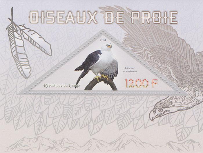 Почтовый блок Хищные птицы Конго, 2014 год739Почтовый блок Хищные птицы Конго, 2014 год. Размер марки: 9 х 3.5 см. Размер блока: 12 х 9 см. Сохранность хорошая.