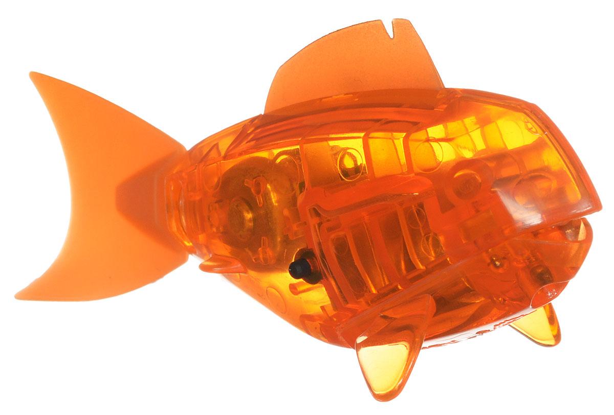 Hexbug Микро-робот AquaBot с аквариумом цвет оранжевый460-2914_оранжевыйУникальный микро-робот Hexbug Aquabot изготовлен из безопасного пластика и выполнен в виде забавной рыбки. Теперь микро-роботы осваивают и водные глубины! Все что нужно - это прозрачная емкость и простая водопроводная вода. Бросьте Aquabot в жидкость, он почувствует комфортную для себя стихию и радостно зашевелит хвостом. Несколько режимов работы робота позволяют ему точно имитировать движение настоящей рыбки, неспешно плавая на поверхности или быстро погружаясь на глубину. Робот Aquabot плавает как настоящая рыба и непредсказуем в направлении движения. Если микро-робот замер, то достаточно просто всколыхнуть аквариум, и он снова поплывёт. Вне воды он автоматически выключается. В комплект входит пластиковый аквариум. Для работы игрушки необходимы 2 батарейки типа LR44 (в комплекте).