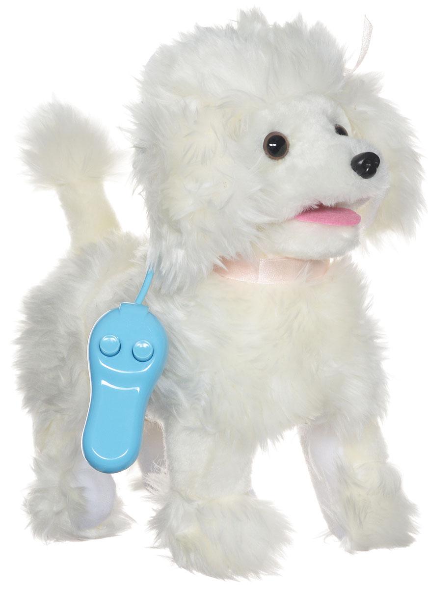 Sonata Style Мягкая озвученная игрушка Мой щенок на пульте управления цвет белыйGT5932Мягкая озвученная игрушка Sonata Style Мой щенок развлечет вашего ребенка и станет для него любимой игрушкой. Игрушка выполнена в виде симпатичной собачки белого цвета. На шее у щеночка красуется ленточка розового цвета. В комплект с игрушкой входит пульт управления, выполненный в виде поводка. Собачка умеет ходить вперед, останавливаться, шевелить хвостиком и лаять. Благодаря заложенным в игрушку функциям, у вашего ребенка возникнет ощущение, что это настоящий щенок. Ваш ребенок сможет ухаживать за его шерстью, расчесывая её гребешком, или выгуливать по комнате или во дворе. При этом игрушечная собачка не доставит вам хлопот, в отличие от настоящей собаки. Никакой лишней уборки из-за шерсти и грязных лап. Щенок поднимет настроение вашему малышу и подарит массу положительных эмоций. Работает от 2 батареек напряжением 1,5V типа С (товар комплектуется демонстрационными).
