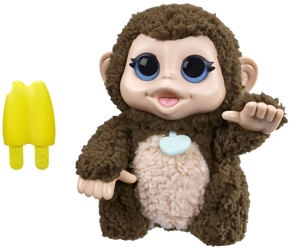 FurReal Friends Интерактивная игрушка ОбезьянаA9084_B4990Мягкая игрушка FurReal Friends Обезьяна привлечет внимание ребенка и станет для него отличным подарком. Смешливая обезьянка совсем как живая. Если обезьянку щекотать или обнимать, она станет весело и заразительно смеяться. Она двигает лапками и издает разнообразные звуки. Игрушка покрыта нежным, приятным на ощупь искусственным мехом. В комплект входит лакомство-игрушка для питомца в виде мороженого. С обезьянкой-хохотушкой скучно никогда не будет! Рекомендуется докупить 3 батарейки типа LR44 (товар комплектуется демонстрационными).