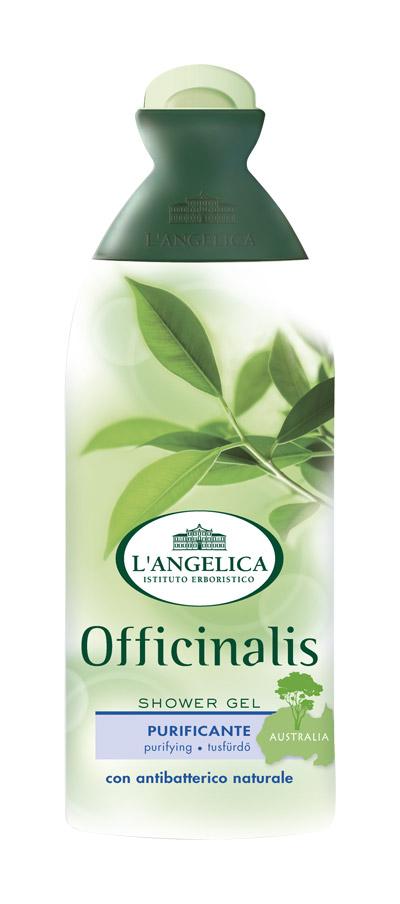Langelica (0836) Гель для душа с маслом чайного дерева, 250 мл535-0-09799LANGELICA OFFICINALIS. Гель для душа очищающий антибактериальный с маслом чайного дерева. Гель для душа содержит масло Melaleuca Alternifolia, известное как масло австралийского чайного дерева- чудо растения. Регулярное использование геля мягко действует на самую чувствительную кожу, укрепляет ее естественный защитный барьер против бактерий, делает ее здоровой и полной жизни.