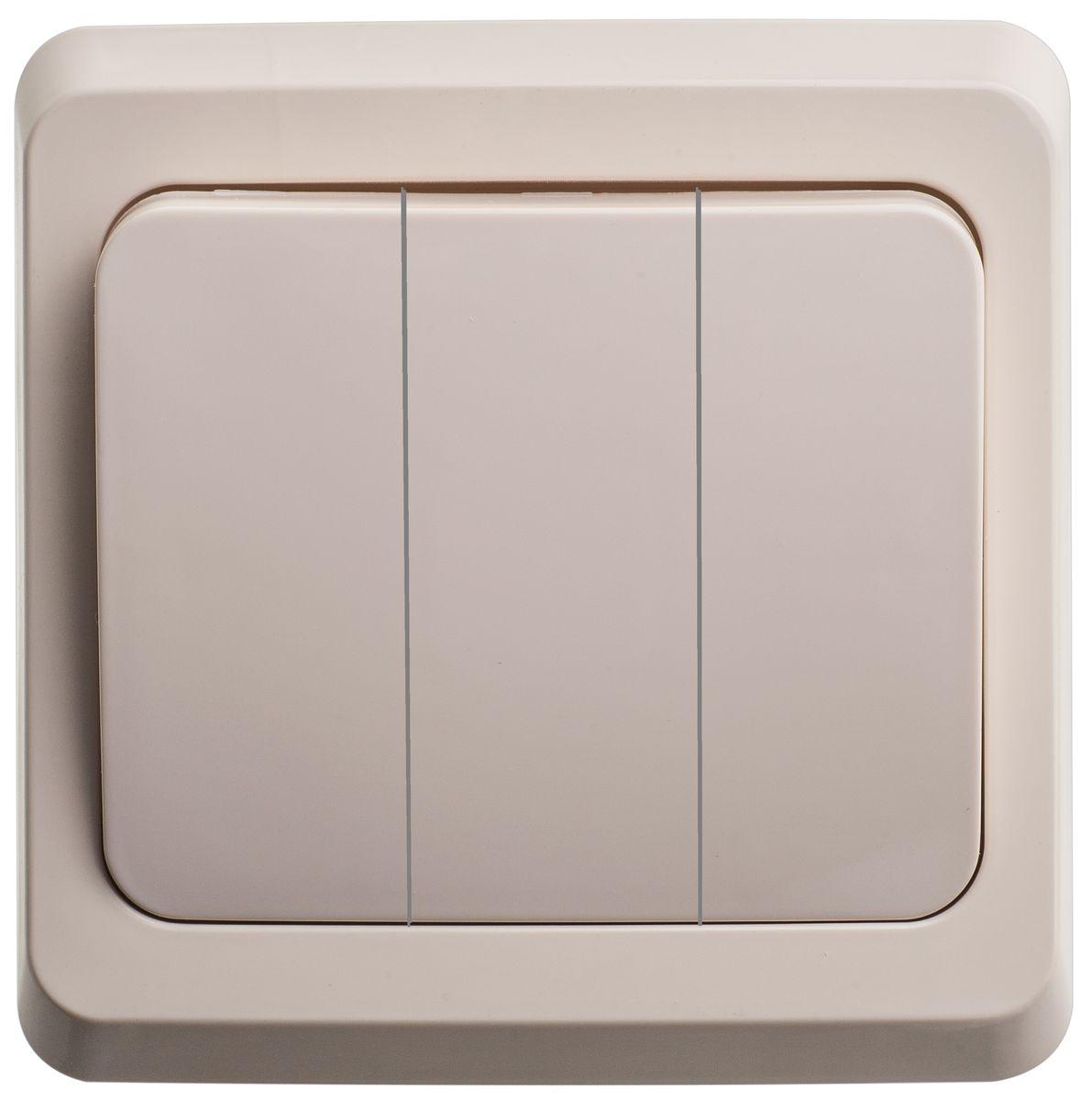 Выключатель Schneider Electric Этюд, тройной, цвет: кремовый. BC10-003BC10-003KТрехклавишный выключатель Schneider Electric Этюд предназначен для скрытой установки. Выполнен из высококачественного пластика. Изделие просто в установке, надежно в эксплуатации. Специальное покрытие не позволяет пыли собираться на поверхности. Такой выключатель станет удачным решением для дома и дачи. Функция выключателя: двухканальный. Тип контактов: 2 Н.О. Диапазон мощности: Номинальный ток: 250 В. Тип клемм: винтовые зажимы 2,5 мм2. Длина зачистки проводов: 11 мм. Степень защиты: IP20.