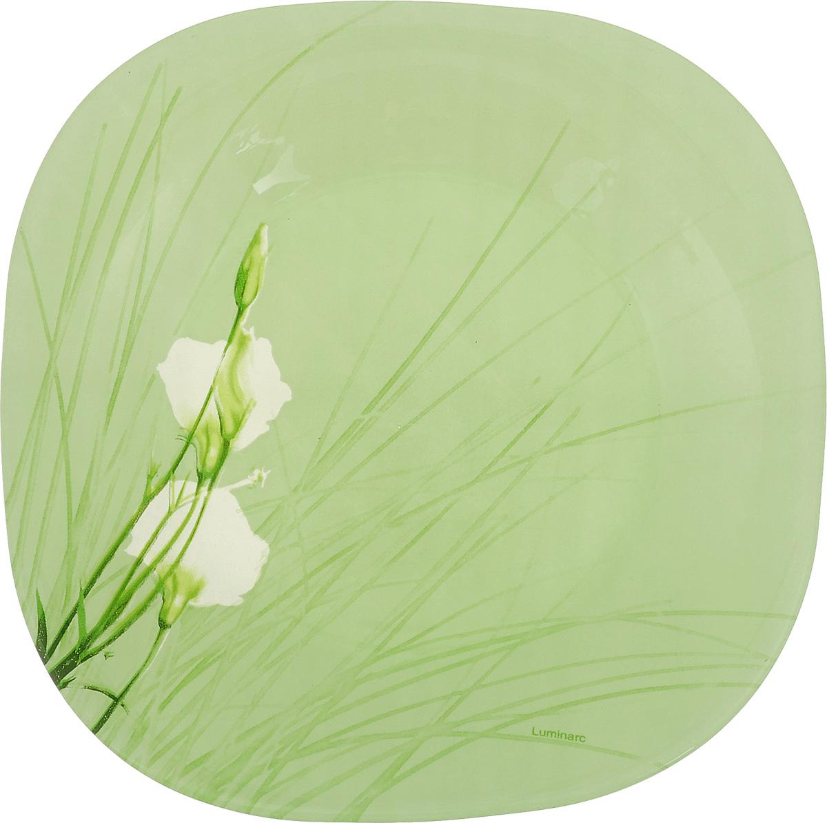Тарелка десертная Luminarc Sofiane, цвет: зеленый, 18 х 18 смJ7808Десертная тарелка Luminarc Sofiane, изготовленная из ударопрочного стекла, декорирована ярким рисунком. Такая тарелка прекрасно подходит как для торжественных случаев, так и для повседневного использования. Идеальна для подачи десертов, пирожных, тортов и многого другого. Она прекрасно оформит стол и станет отличным дополнением к вашей коллекции кухонной посуды. Размер тарелки (по верхнему краю): 18 см.
