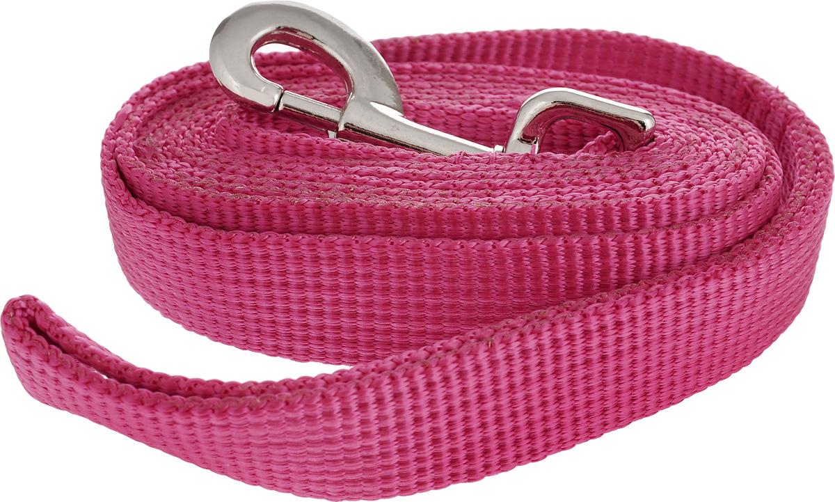 Поводок капроновый для собак Аркон, цвет: розовый, ширина 2,5 см, длина 1,5 мпк1,5м25_розовыйПоводок для собак Аркон изготовлен из высококачественного цветного капрона и снабжен металлическим карабином. Изделие отличается не только исключительной надежностью и удобством, но и привлекательным современным дизайном. Поводок - необходимый аксессуар для собаки. Ведь в опасных ситуациях именно он способен спасти жизнь вашему любимому питомцу. Иногда нужно ограничивать свободу своего четвероногого друга, чтобы защитить его или себя от неприятностей на прогулке. Длина поводка: 1,5 м. Ширина поводка: 2,5 см.