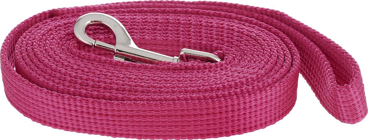 Поводок капроновый для собак Аркон, цвет: розовый, ширина 2 см, длина 3 мпк3м20_розовыйПоводок для собак Аркон изготовлен из высококачественного цветного капрона и снабжен металлическим карабином. Изделие отличается не только исключительной надежностью и удобством, но и привлекательным современным дизайном. Поводок - необходимый аксессуар для собаки. Ведь в опасных ситуациях именно он способен спасти жизнь вашему любимому питомцу. Иногда нужно ограничивать свободу своего четвероногого друга, чтобы защитить его или себя от неприятностей на прогулке. Длина поводка: 3 м. Ширина поводка: 2 см.