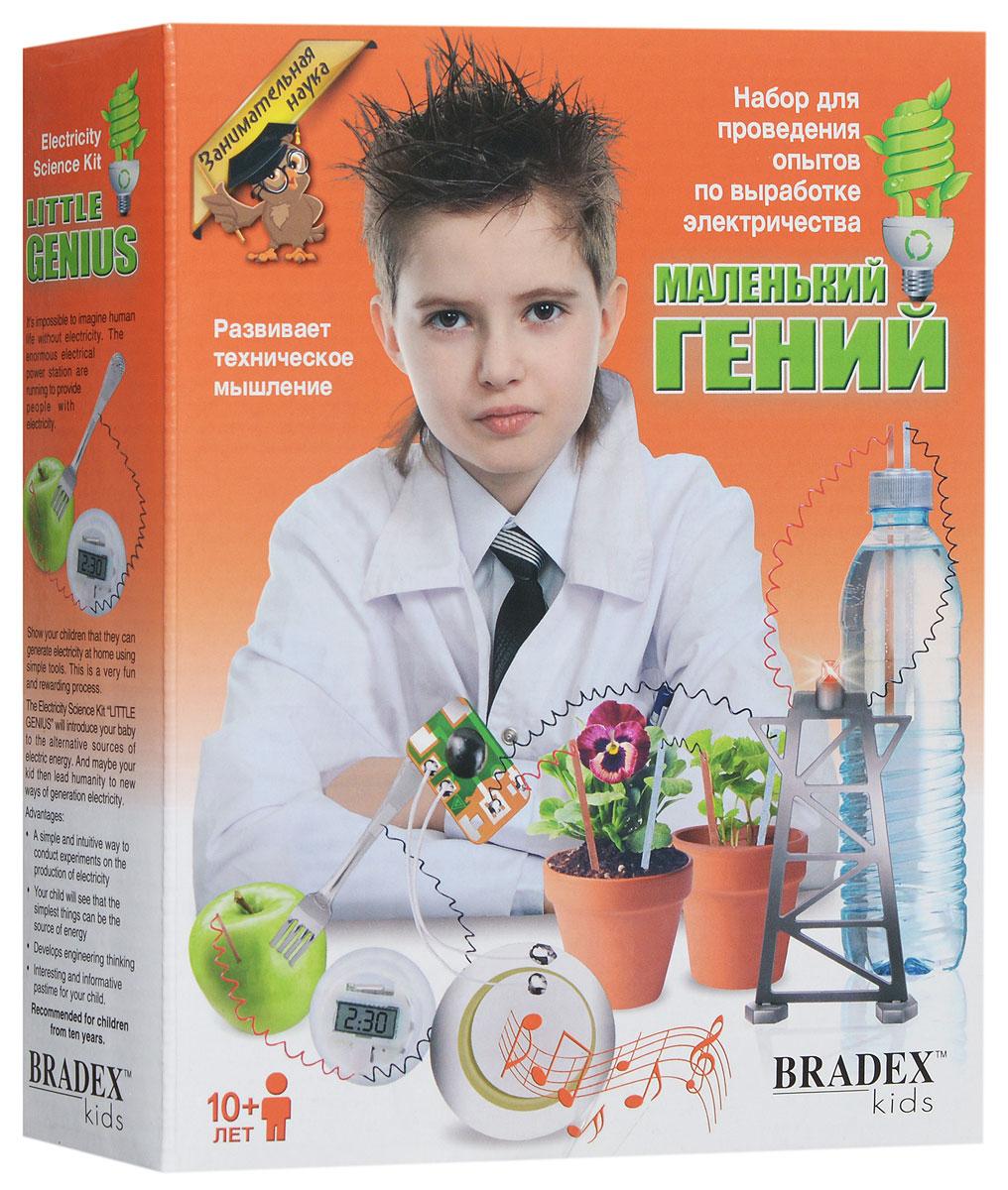 Bradex Набор для проведения опытов по выработке электричества Маленький гений