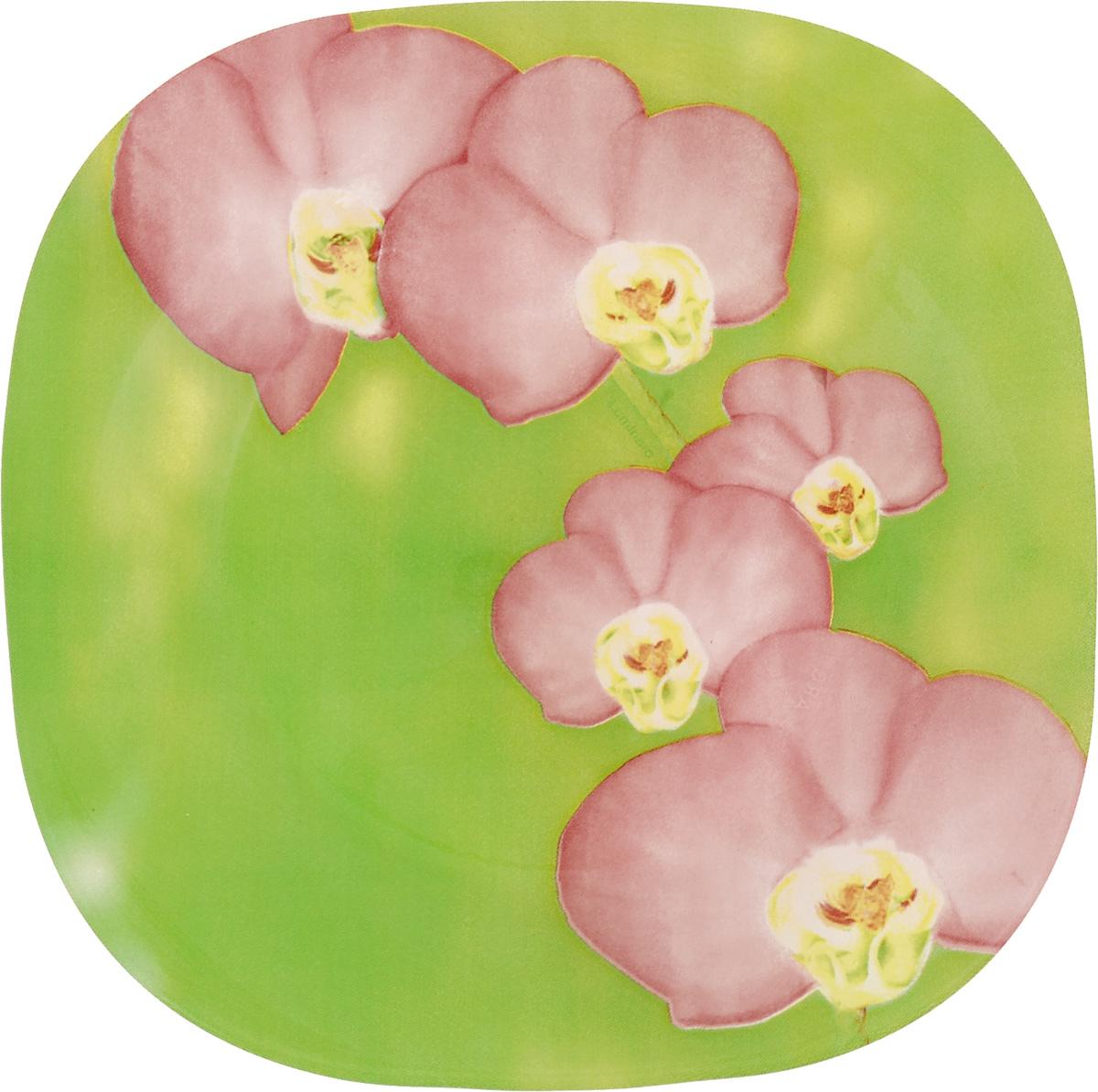 Тарелка десертная Luminarc Carina Erine, 18 х 18 смJ7911Десертная тарелка Luminarc Carina Erine, изготовленная из ударопрочного стекла, декорирована ярким рисунком. Такая тарелка прекрасно подходит как для торжественных случаев, так и для повседневного использования. Идеальна для подачи десертов, пирожных, тортов и многого другого. Она прекрасно оформит стол и станет отличным дополнением к вашей коллекции кухонной посуды. Размер тарелки (по верхнему краю): 18 см.