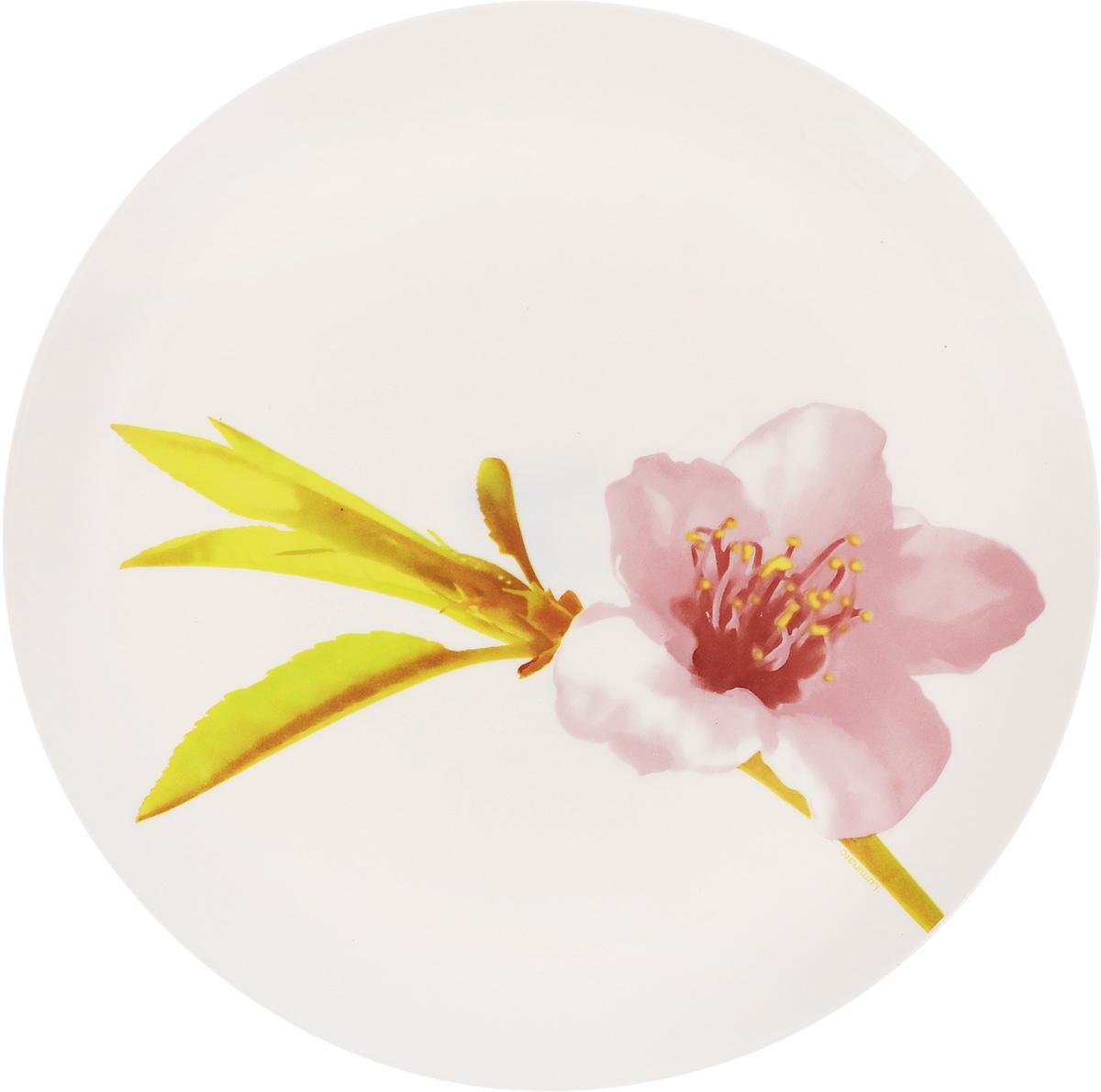Тарелка Luminarc Water Color, диаметр 25 смJ4652Тарелка Luminarc Water Color, изготовленная из ударопрочного стекла, декорирована оригинальным изображением. Такая тарелка прекрасно подходит как для торжественных случаев, так и для повседневного использования. Идеальна для подачи десертов, пирожных, тортов и многого другого. Она прекрасно оформит стол и станет отличным дополнением к вашей коллекции кухонной посуды. Диаметр тарелки (по верхнему краю): 25 см. Высота тарелки: 2 см.
