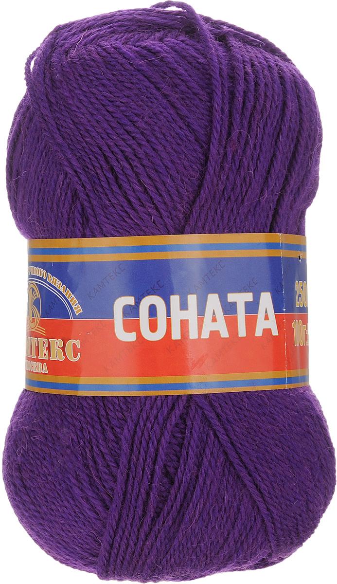 Пряжа для вязания Камтекс Соната, цвет: фиолетовый (060), 250 м, 100 г, 10 шт136030_060Пряжа для вязания Камтекс Соната изготовлена из 50% шерсти, 50% акрила. Она вяжется легко и свободно, имеет богатую цветовую гамму от теплых пастельных тонов до ярких и смелых оттенков. Ворсистая ниточка ровно складывается в полотно, которое имеет минимальный процент усадки. Из пряжи Соната прекрасно вяжутся теплые туники, жилеты, свитера, платья и многие другие изделия. Рекомендуемые для вязания спицы и крючки 3-5 мм. Состав: 50% шерсть, 50% акрил. Комплектация: 10 шт. Толщина нити: 2 мм.