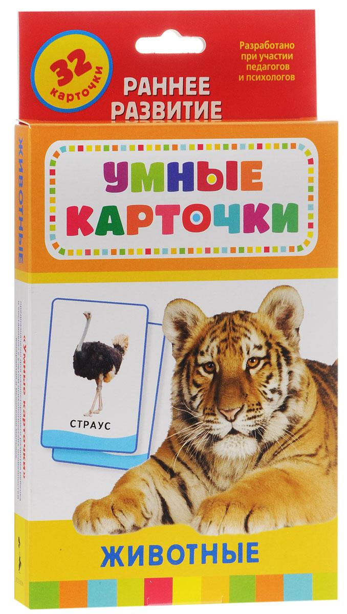 Росмэн Обучающие карточки Животные20991Набор обучающих карточек Животные поможет вашему ребенку не просто познакомиться с животными, запомнить их изображения, названия или характерные особенности, но и укажет вам направление для бесед, совместной деятельности и развития ребенка (его речи, мышления, памяти). В карточках представлены животные разных континентов, сред обитания. Здесь вы найдете и птиц, и млекопитающих, и пресмыкающихся; хищных и травоядных животных. Карточки содержат задания разного уровня сложности. На лицевой стороне карточек помещены буквы и изображения. Вопросы на оборотной стороне карточек способствуют автоматизации звуков и развитию речи. Обучение в форме увлекательной игры наилучшим образом подходит детям старше трех лет. Серия Умные карточки - это уникальные комплекты игр и заданий, направленных на эффективное развитие интеллекта, речи, памяти и внимания, образного и логического мышления.