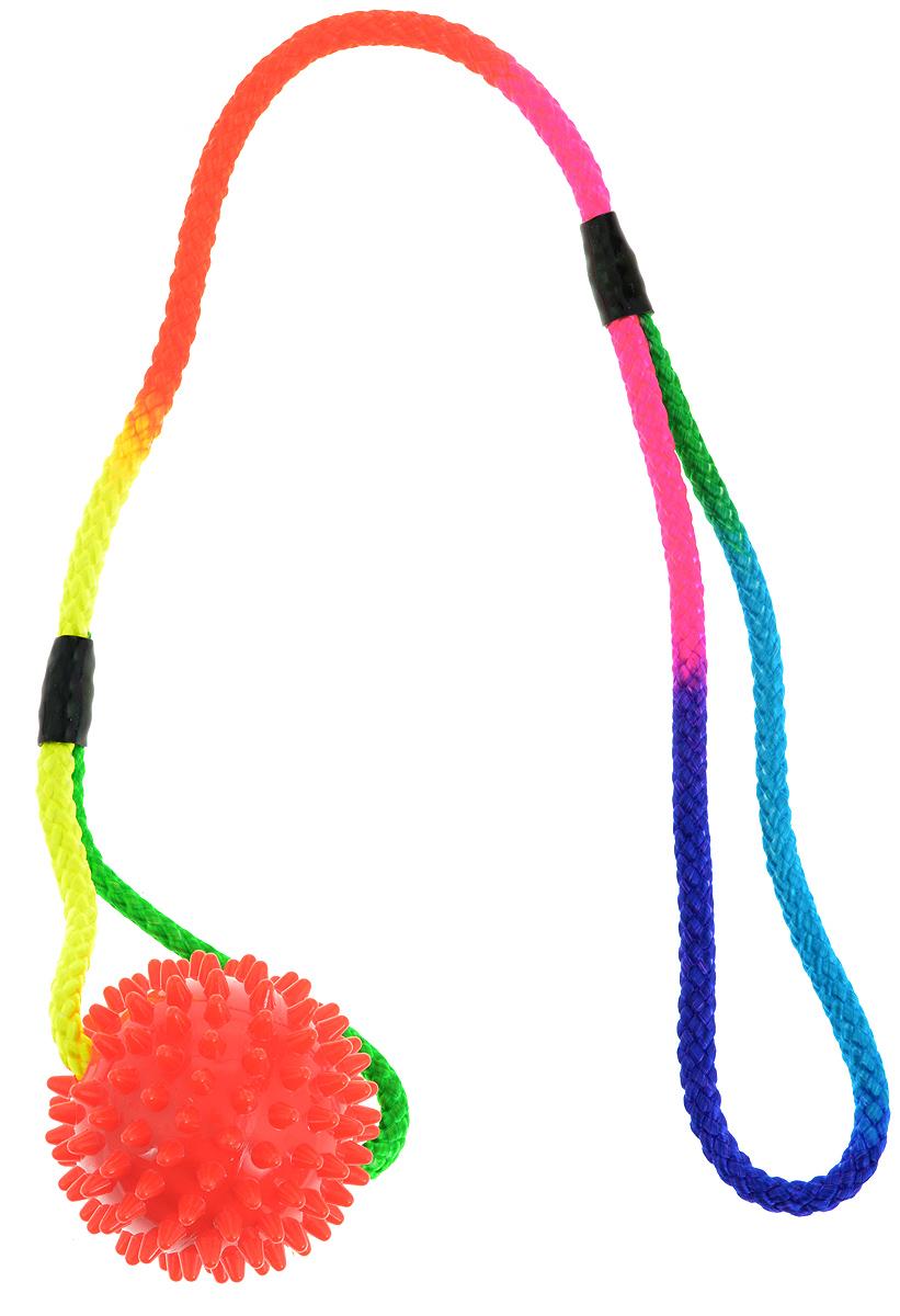 Игрушка для собак V.I.Pet Массажный мяч, на шнуре, цвет: красный, диаметр 5,5 см. 770650770650_красныйИгрушка для собак V.I.Pet Массажный мяч, изготовленная из экологически чистого пластика, предназначена для массажа и самомассажа рефлексогенных зон. Она имеет мягкие закругленные массажные шипы, эффективно массирующие и не травмирующие кожу. Сквозь мяч продет шнур. Игрушка не позволит скучать вашему питомцу ни дома, ни на улице. Диаметр: 5,5 см. Длина шнура: 50 см.