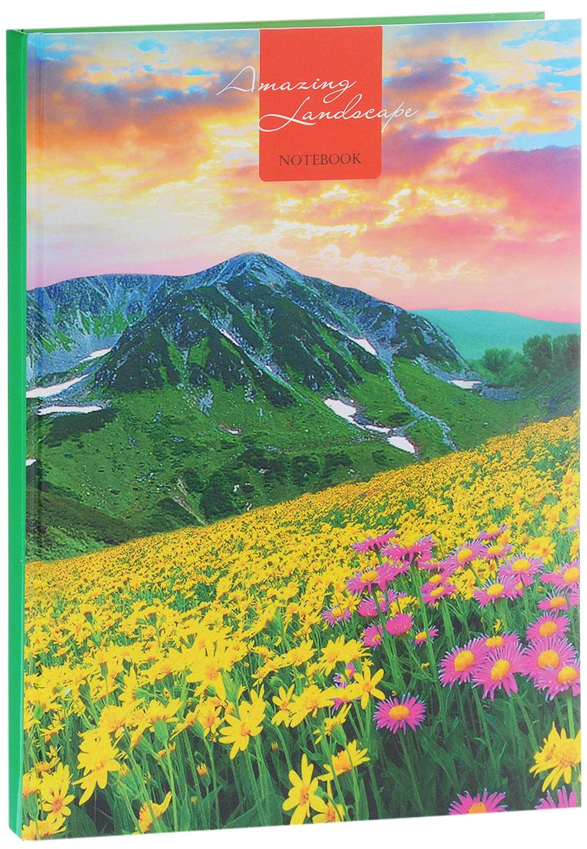 Listoff Записная книжка Цветущая долина 80 листов в клеткуКЗ4801699Записная книжка Listoff Цветущая долина - незаменимый атрибут современного человека, необходимый для рабочих и повседневных записей в офисе и дома. Записная книжка содержит 80 листов формата А4 в клетку. Обложка, выполненная из плотного картона, оформлена ярким изображением, что обеспечит индивидуальность и визуальную притягательность. А глянцевая ламинация придает блеск обложке. Прошитый внутренний блок гарантирует полное отсутствие потери листов. Записная книжка Listoff Цветущая долина станет достойным аксессуаром среди ваших канцелярских принадлежностей. Она подойдет как для деловых людей, так и для любителей записывать свои мысли, рисовать скетчи, делать наброски.