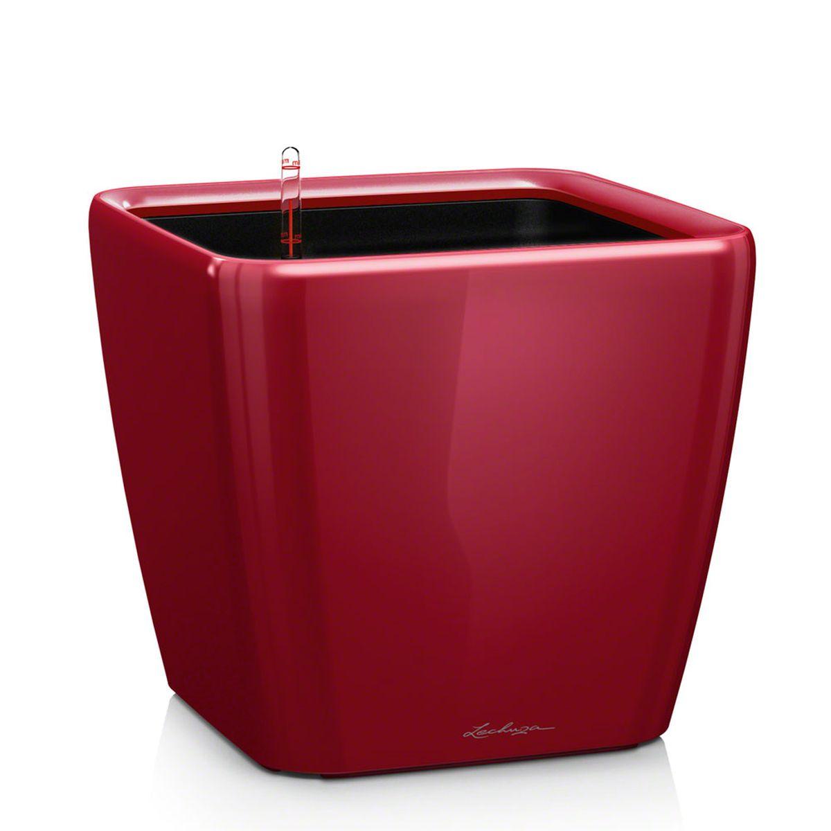 Кашпо Lechuza Quadro, с системой автополива, цвет: красный, 33 х 33 х 35 см16167Кашпо Lechuza Quadro, выполненное из высококачественного пластика, имеет уникальную систему автополива, благодаря которой корневая система растения непрерывно снабжается влагой из резервуара. Уровень воды в резервуаре контролируется с помощью специального индикатора. В зависимости от размера кашпо и растения воды хватает на 2-12 недель. Это способствует хорошему росту цветов и предотвращает переувлажнение. В набор входит: кашпо, внутренний горшок, индикатор уровня воды, вал подачи воды, субстрат растений в качестве дренажного слоя, резервуар для воды. Кашпо Lechuza Quadro прекрасно впишется в любой интерьер. Оно поможет расставить нужные акценты и придаст помещению вид, соответствующий вашим представлениям.