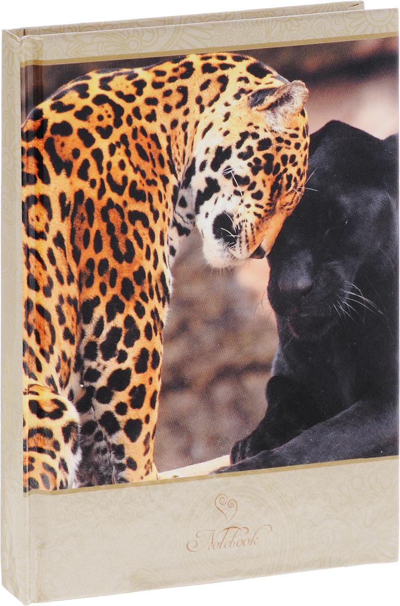 Listoff Записная книжка Дикие кошки 80 листов в клетку