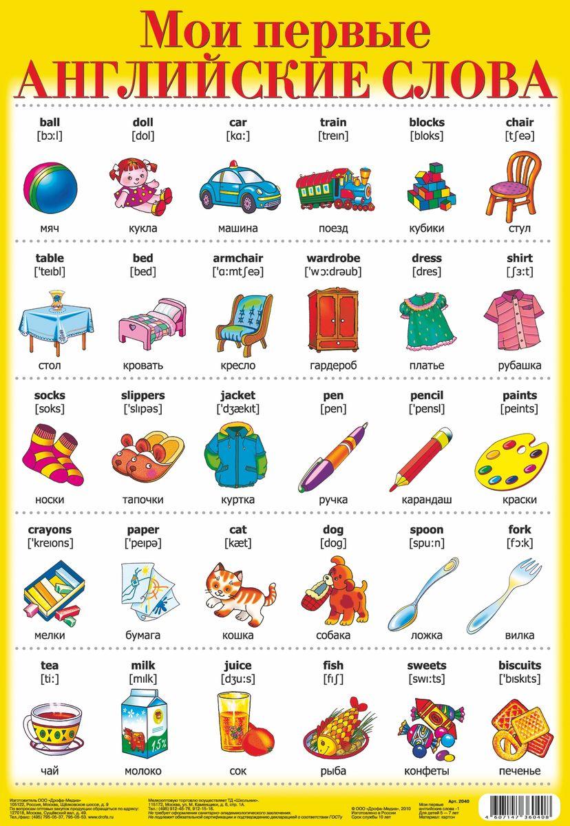 Дрофа-Медиа Обучающий плакат Мои первые английские слова 12040С таким замечательным плакатом Дрофа-Медиа обучение английскому языку из нудных уроков превратится в увлекательную игру. Разглядывая картинки, ребенок автоматически рассматривает и надписи возле них. Таким образом, происходит запоминание английских слов на уровне подсознания, без утомительной зубрежки. Поместите этот плакат на видном месте, там, где ребенок проводит много времени, например в детской комнате, и результат не заставит себя ждать. Вы с удивлением станете отмечать, как быстро ребенок осваивает новые слова и расширяет свой словарный запас иностранного языка. Также плакат можно использовать для занятий в детских кружках и школах.