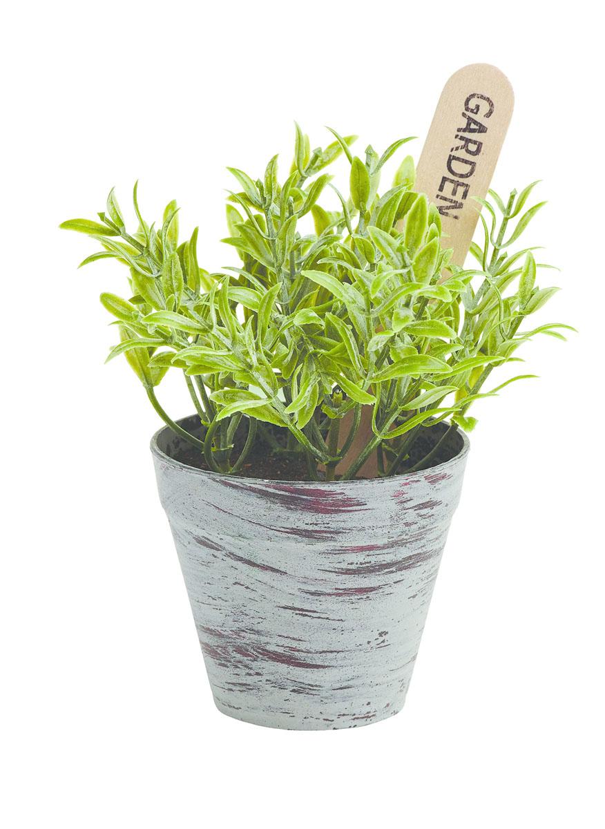 Растение в горшке Gardman, 14х8 см. 02864-202864-2
