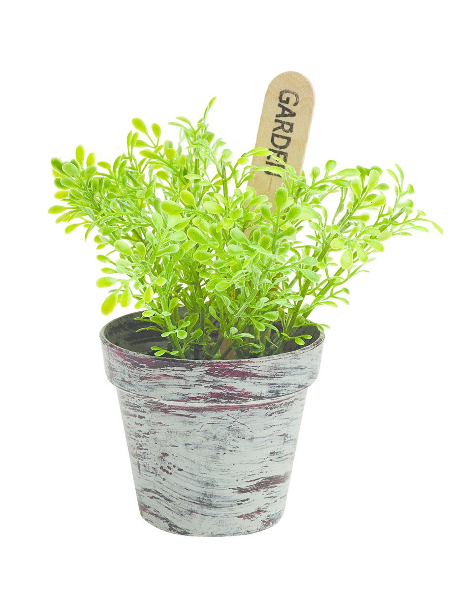 Растение в горшке «Gardman», 14х8 см. 02864-1