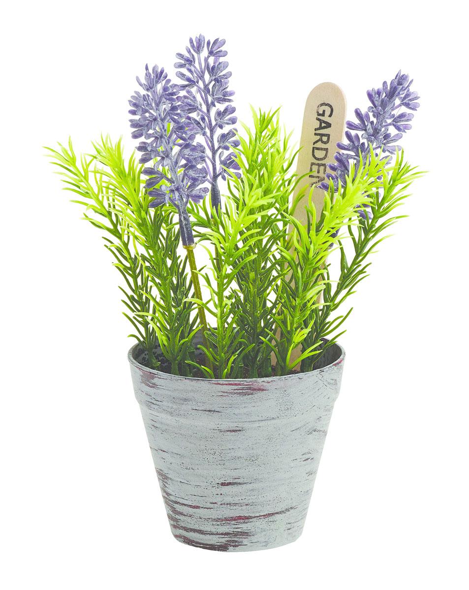 Растение цветущее в горшке Gardman, 14х8 см. 02863_102863_1