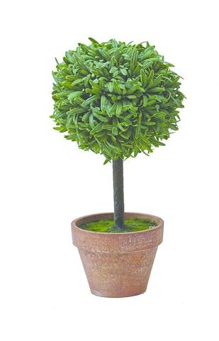 Мини-дерево топиари Gardman, 28 х 13 см. 02862_102862_1