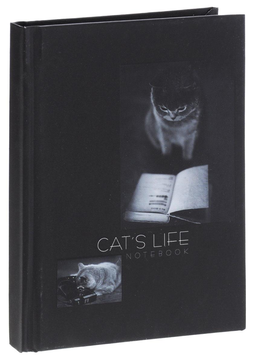 Listoff Записная книжка Кошачья жизнь 80 листов в клетку