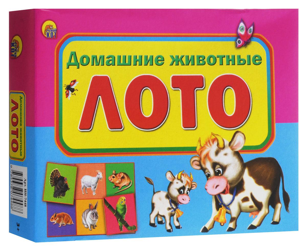 Рыжий Кот Настольная игра Лото Домашние животныеИН-7448Настольная игра Рыжий Кот Лото Домашние животные - познавательная игра, которая позволит весело провести время как детям, так и взрослым. Она развивает логическое и ассоциативное мышление, помогает в дошкольной подготовке. Игра поможет изучить домашних животных, которых можно разводить как на ферме, так и в квартирных условиях. В настольной игре могут принять участие от 2 до 4 игроков. Для игры необходимо разрезать по пунктирным линиям карточки с рисунками, выбрать ведущего. Ведущий раздает карточки лото каждому игроку, а затем берет по одной карточке с рисунком, показывает игрокам и называет вслух то, что на ней изображено. Если изображение на карточке лото у одного из игроков совпадает с изображением на карточке ведущего, то игрок накрывает ею соответствующую область в карточке лото. Игра продолжается до тех пор, пока все рисунки на карточке лото не будут закрыты. Первый, кто справится с этим заданием, становится победителем. В набор входит 6...