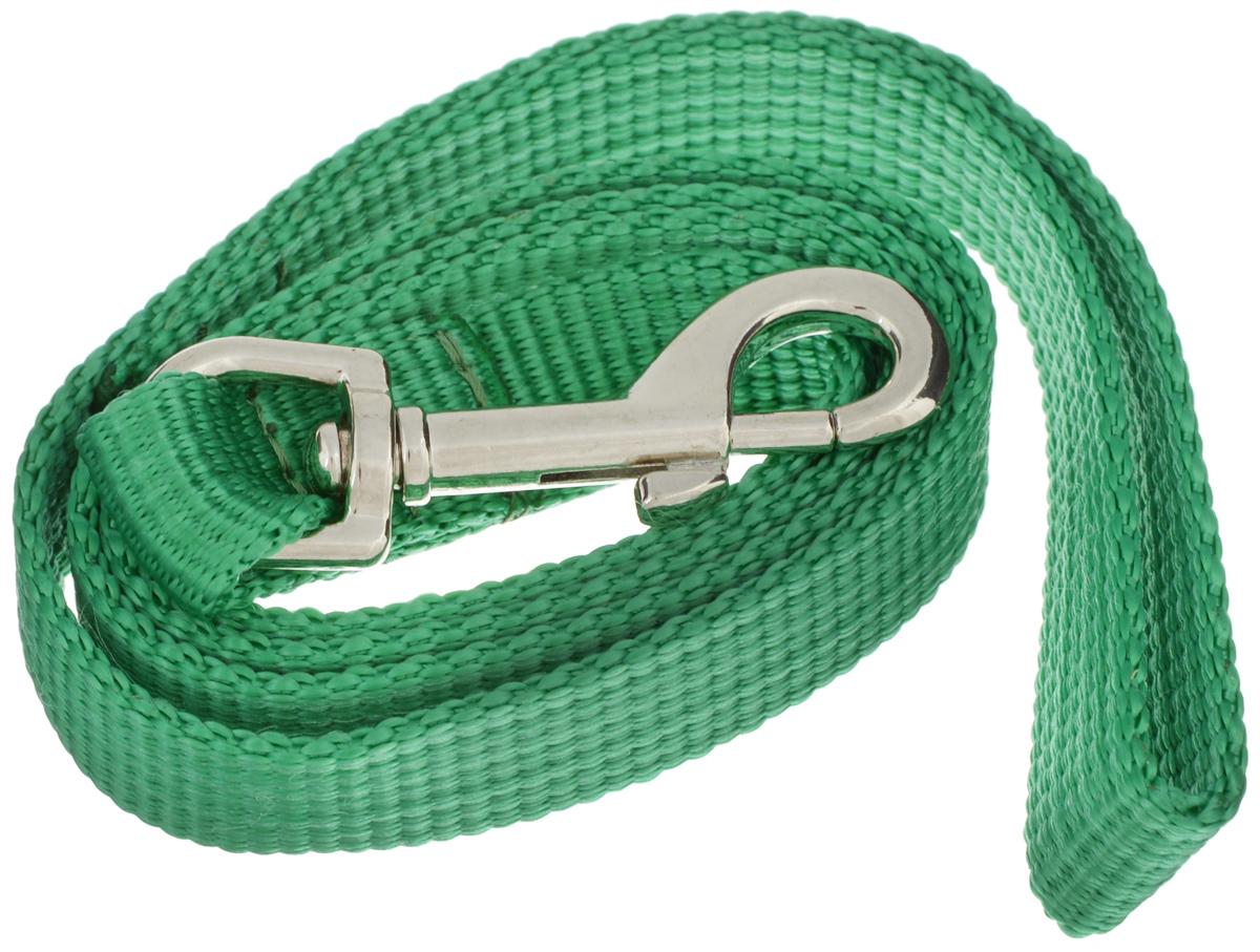 Поводок капроновый для собак Аркон, цвет: зеленый, ширина 2 см, длина 1 мпк1м20_зеленыйПоводок для собак Аркон изготовлен из высококачественного цветного капрона и снабжен металлическим карабином. Изделие отличается не только исключительной надежностью и удобством, но и привлекательным современным дизайном. Поводок - необходимый аксессуар для собаки. Ведь в опасных ситуациях именно он способен спасти жизнь вашему любимому питомцу. Иногда нужно ограничивать свободу своего четвероногого друга, чтобы защитить его или себя от неприятностей на прогулке. Длина поводка: 1 м. Ширина поводка: 2 см. Уважаемые клиенты! Обращаем ваше внимание на то, что товар может содержать светодиодную ленту.