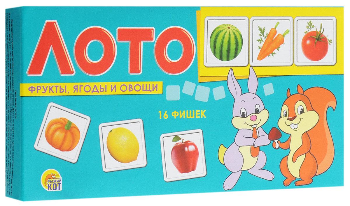 Рыжий Кот Лото Фрукты ягоды и овощиИН-9052Настольная игра Рыжий Кот Лото. Фрукты, ягоды и овощи - познавательная игра, которая позволит весело провести время, как детям, так и взрослым. Она развивает логическое и ассоциативное мышление, помогает в дошкольной подготовке. Игра познакомит ребенка с разными съедобными фруктами, ягодами и овощами. В настольной игре могут принять участие 2-3 игрока. Ведущий раздает карточки лото каждому игроку, а затем берет по одной пластиковой карточке с рисунком, показывает игрокам и называет вслух то, что на ней изображено. Если изображение на карточке лото у одного из игроков совпадает с изображением на карточке ведущего, то игрок накрывает ею соответствующую область в карточке лото. Игра продолжается до тех пор, пока все рисунки на карточке лото не будут закрыты. Первый, кто справится с этим заданием, становится победителем. В набор входит 16 пластиковых фишек, 4 игровых поля.