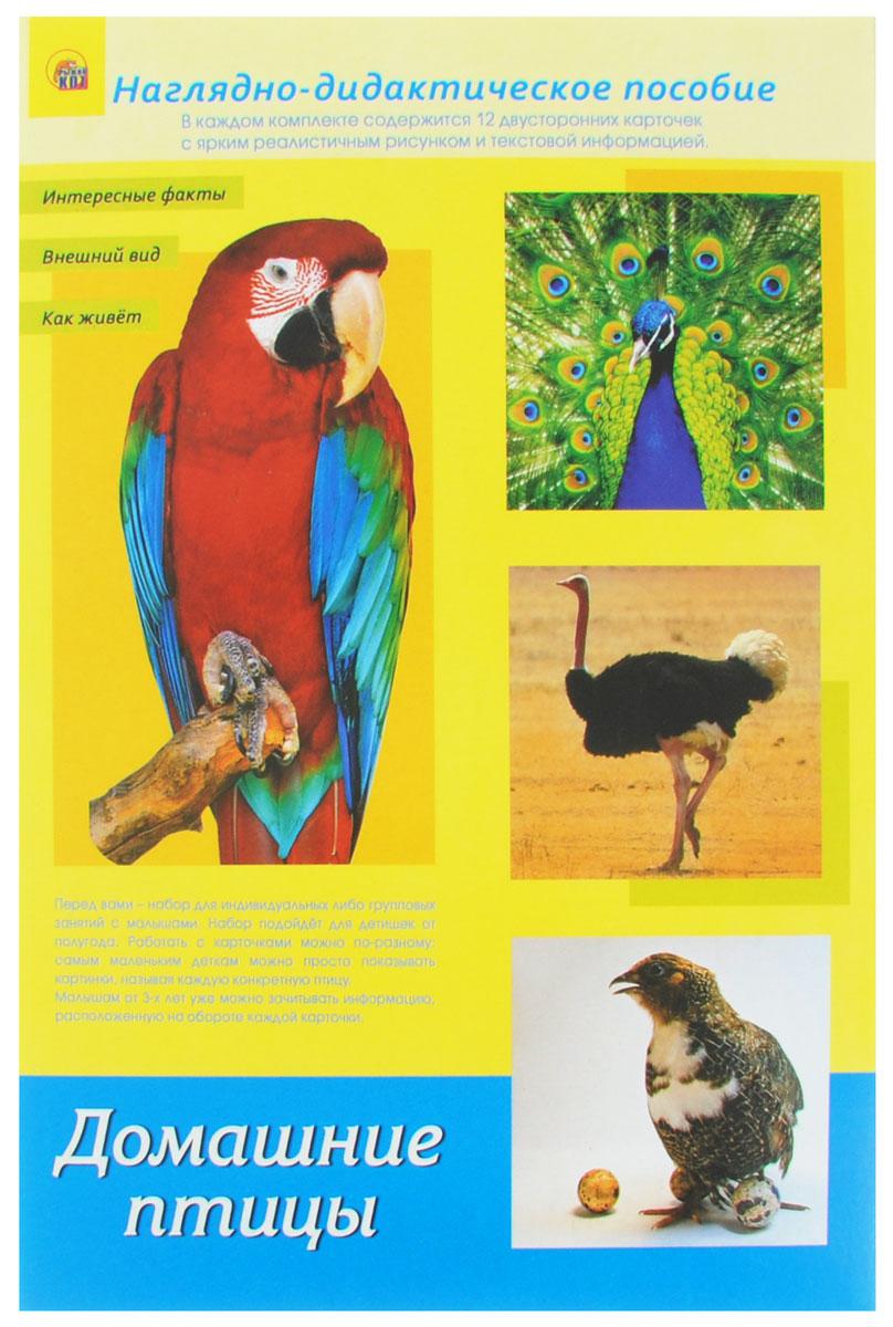 Рыжий Кот Обучающие карточки Дидактическое пособие Домашние птицыПД-1773Наглядно-дидактическое пособие Домашние птицы - это набор для индивидуальных или групповых занятий с малышами. Набор подойдёт для детишек от полугода. Работать с карточками можно по-разному: самым маленьким деткам можно просто показывать картинки, называя каждое конкретное животное или птицу. Малышам от 3-х лет зачитывайте информацию, расположенную на обороте каждой карточки. В некоторых карточках вы можете встретить слова, выделенные жирным шрифтом. На них предлагается обратить внимание и объяснить ребёнку их значение. Детки от 5-ти лет уже могут самостоятельно заниматься по карточкам, читая информацию на обороте. Двойные карточки рекомендуется разрезать по линии. Их удобство и универсальность заключаются в том, что работа с ними будет комплексной и поэтапной. Когда ваш малыш запомнит названия птиц, можно предложить ему сопоставлять название и рисунок, который ему нужно будет найти самостоятельно. Затем можно просить ребёнка назвать какой-то факт о конкретной птице,...