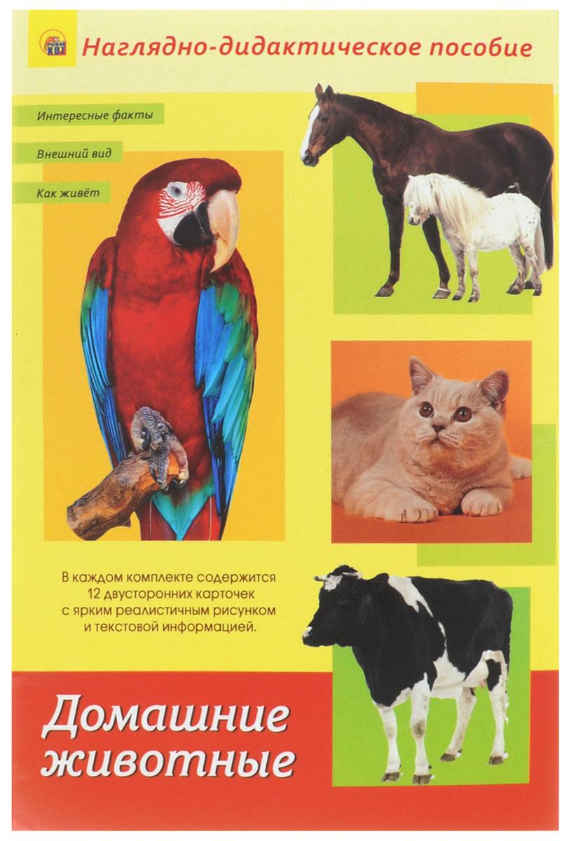Рыжий Кот Обучающие карточки Дидактическое пособие Домашние животныеПД-1258Наглядно-дидактическое пособие Домашние животные - это набор для индивидуальных или групповых занятий с малышами. Набор подойдёт для детишек от полугода. Работать с карточками можно по-разному: самым маленьким деткам можно просто показывать картинки, называя каждое конкретное животное. Малышам от 3-х лет зачитывайте информацию, расположенную на обороте каждой карточки. В некоторых карточках вы можете встретить слова, выделенные жирным шрифтом. На них предлагается обратить внимание и объяснить ребёнку их значение. Детки от 5-ти лет уже могут самостоятельно заниматься по карточкам, читая информацию на обороте. Двойные карточки рекомендуется разрезать по линии. Их удобство и универсальность заключаются в том, что работа с ними будет комплексной и поэтапной. Когда ваш малыш запомнит названия животных, можно предложить ему сопоставлять название и рисунок, который ему нужно будет найти самостоятельно. Затем можно просить ребёнка назвать какой-то факт о конкретном животном,...