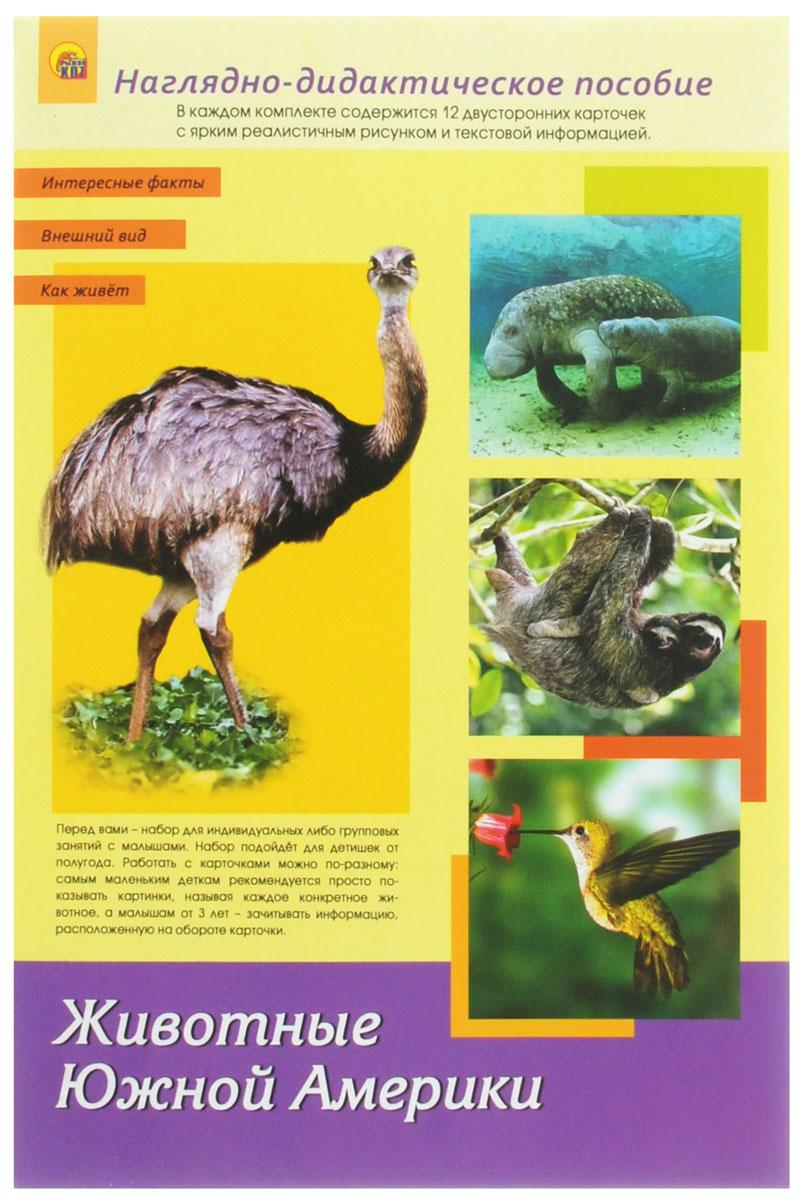Рыжий Кот Обучающие карточки Дидактическое пособие Животные Южной АмерикиПД-1762Наглядно-дидактическое пособие Животные Южной Америки - это набор для индивидуальных или групповых занятий с малышами. Набор подойдёт для детишек от полугода. Работать с карточками можно по-разному: самым маленьким деткам можно просто показывать картинки, называя каждое конкретное животное. Малышам от 3-х лет зачитывайте информацию, расположенную на обороте каждой карточки. В некоторых карточках вы можете встретить слова, выделенные жирным шрифтом. На них предлагается обратить внимание и объяснить ребёнку их значение. Детки от 5-ти лет уже могут самостоятельно заниматься по карточкам, читая информацию на обороте. Двойные карточки рекомендуется разрезать по линии. Их удобство и универсальность заключаются в том, что работа с ними будет комплексной и поэтапной. Когда ваш малыш запомнит названия животных, можно предложить ему сопоставлять название и рисунок, который ему нужно будет найти самостоятельно. Затем можно просить ребёнка назвать какой-то факт о конкретном животном,...
