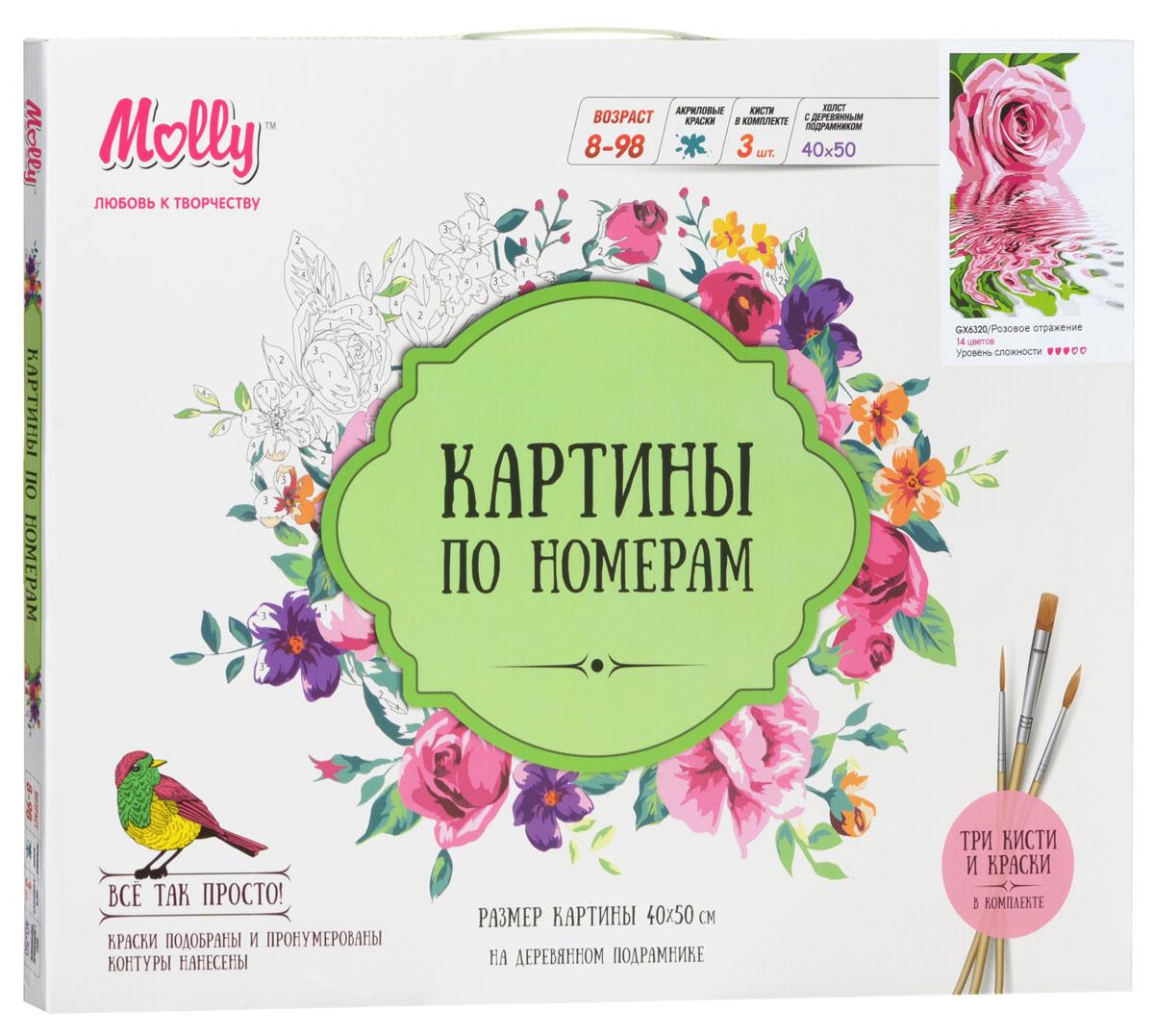 Molly Набор для рисования по номерам Розовое отражение