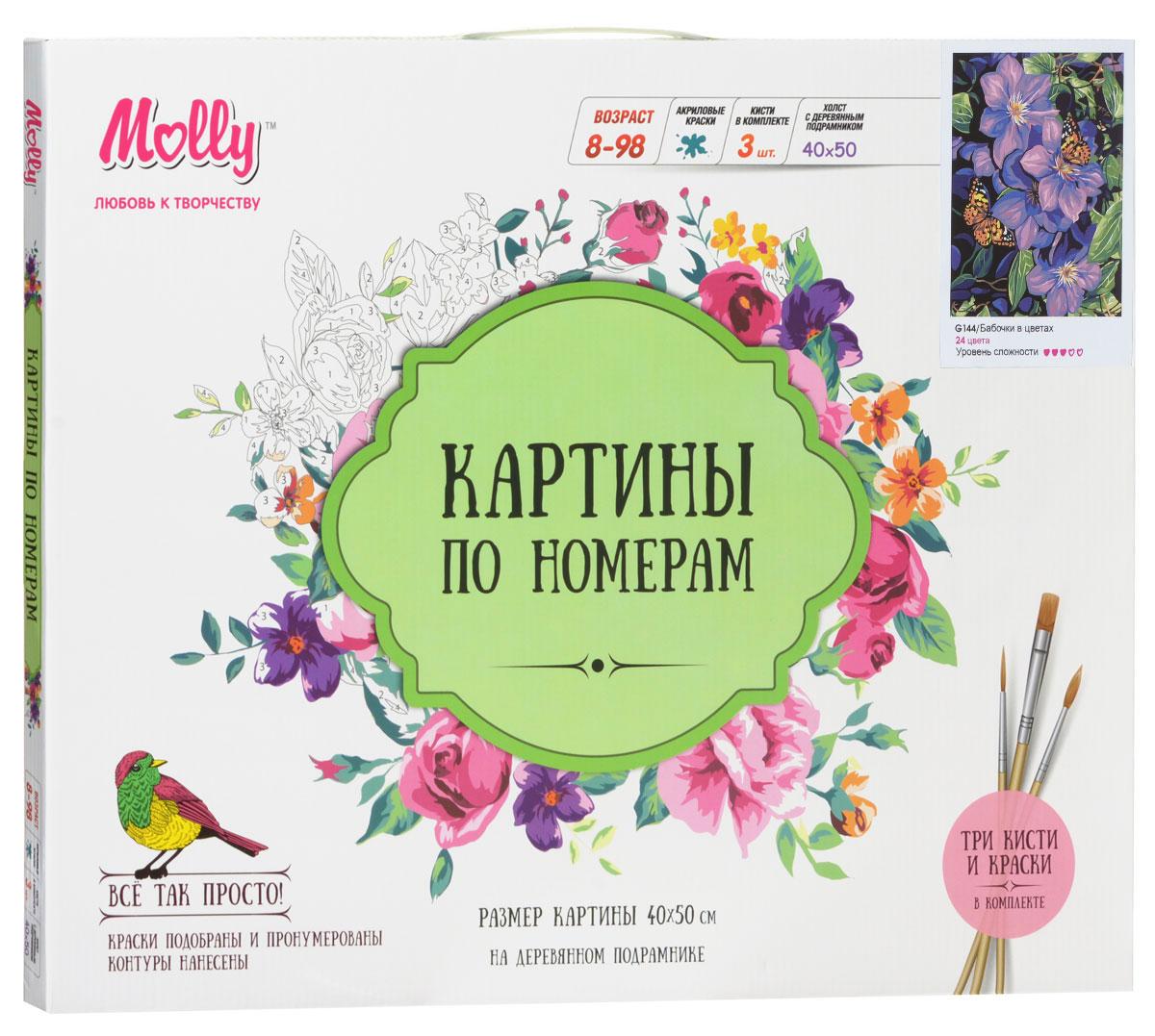 Molly Набор для рисования по номерам Бабочки в цветах