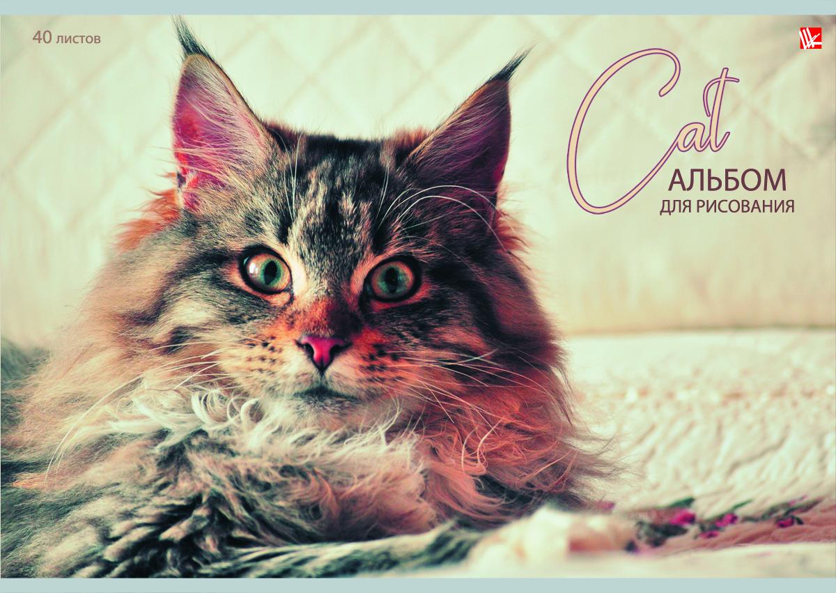 Listoff Альбом для рисования Пушистый кот 40 листовА401332Альбом для рисования Listoff Пушистый кот непременно порадует вашего малыша и вдохновит его на творчество. Яркая, нежная, креативная обложка привлечет внимание юного художника. Обложка альбома оформлена изображением пушистого кота. Внутренний блок представлен 40 листами и изготовлен из высококачественной плотной бумаги на скрепке, что гарантирует чистоту рисунков, высокое качество и комфорт при рисовании. Рисование поможет раскрыть таланты малыша, а также способствует развитию мелкой моторики и художественного вкуса. А с альбомом для рисования Listoff Пушистый кот рисовать легко и приятно!