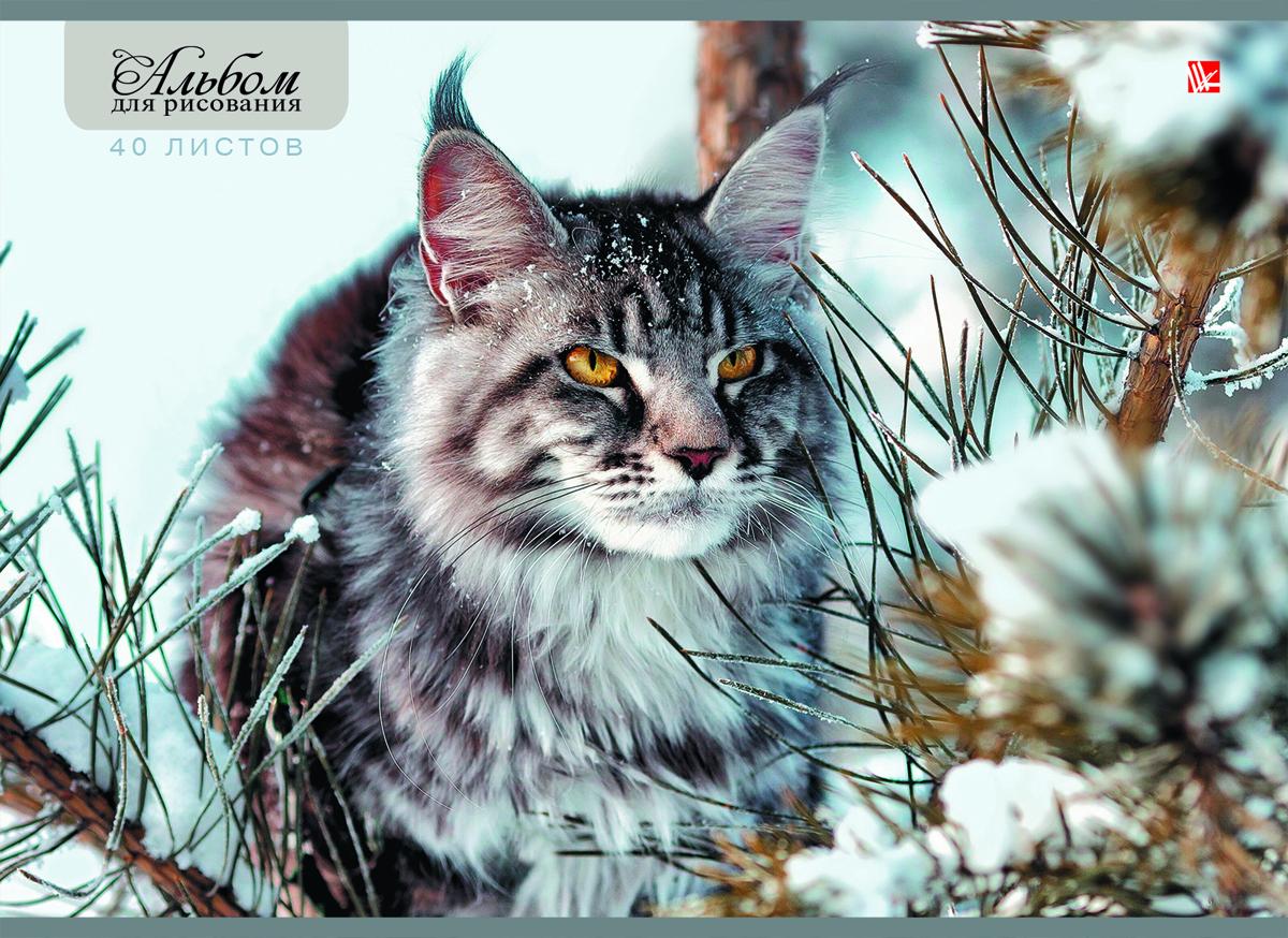 Канц-Эксмо Альбом для рисования Зимний кот 40 листов
