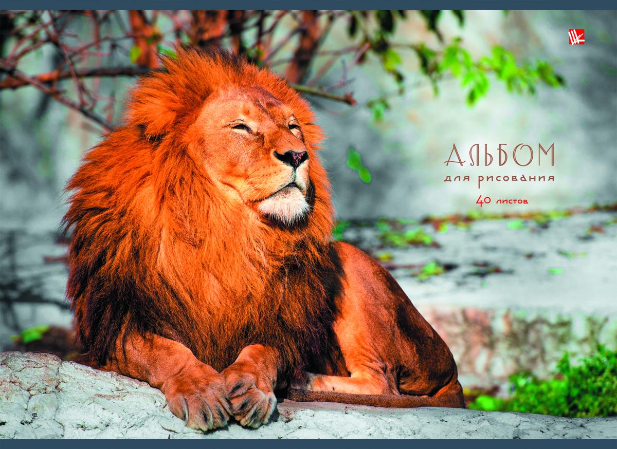Listoff Альбом для рисования Царственный лев 40 листовАЛ401300Альбом для рисования Listoff Царственный лев непременно порадует вашего малыша и вдохновит его на творчество. Яркая, красочная, креативная обложка выполнена из картона и оформлена изображением льва. Внутренний блок состоит из 40 листов белой высококачественной бумаги на склейке, что гарантирует чистоту рисунков, высокое качество и комфорт при рисовании. Рисование поможет раскрыть таланты малыша, а также способствует развитию мелкой моторики и художественного вкуса. А с данным альбомом для рисования рисовать легко и приятно! Рекомендуемый возраст: от 6 лет.