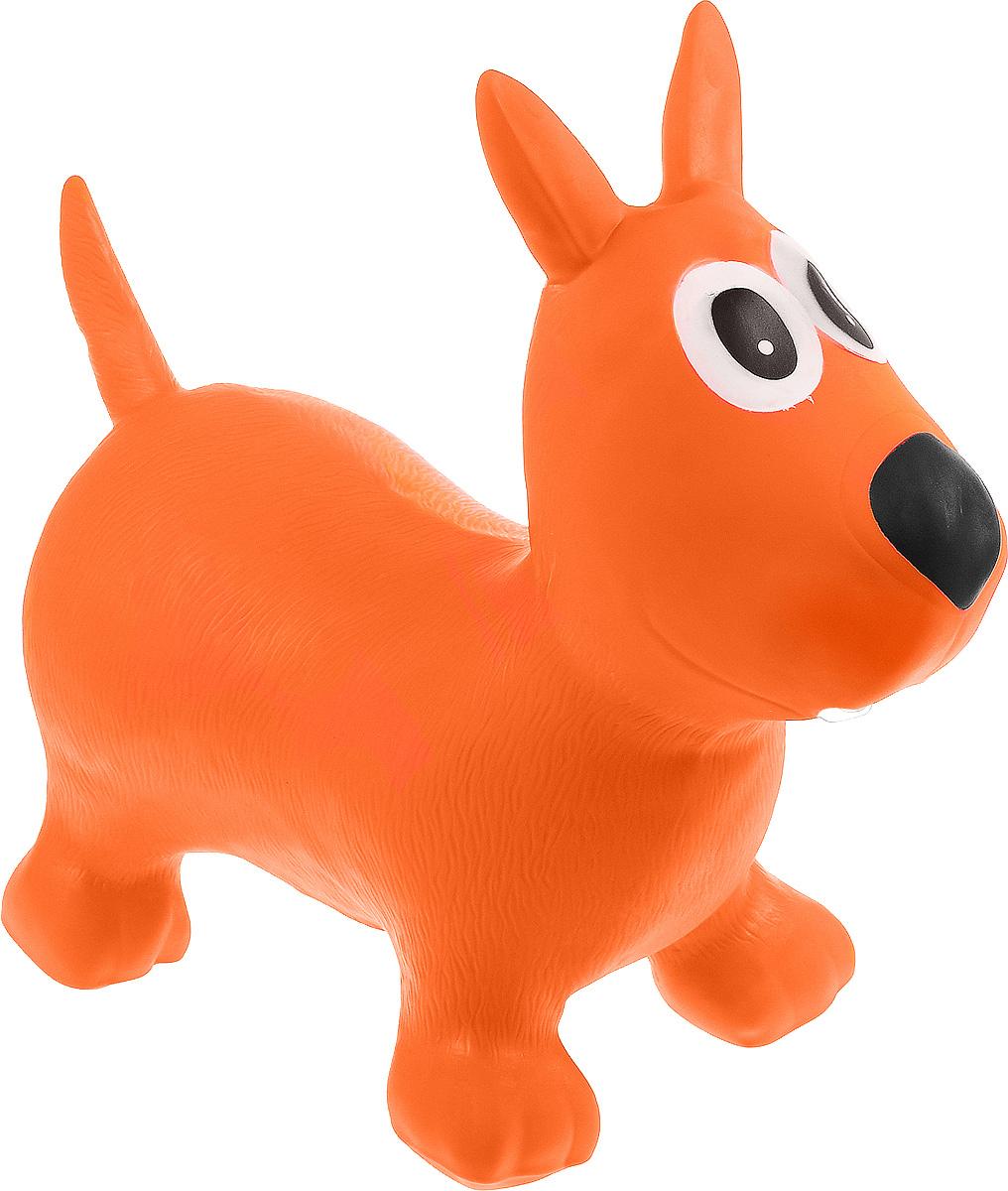 Altacto Игрушка-попрыгун Щенок цвет оранжевыйALT1802-020Игрушка-попрыгун Altacto Щенок даст выход скопившейся энергии даже самого активного малыша. На ней можно прыгать по комнате, а также использовать как стульчик во время просмотра мультиков. Игрушка развивает координацию, укрепляет кости и мышцы. Рекомендована педиатрами. Максимальная нагрузка на прыгуна - 100 кг.