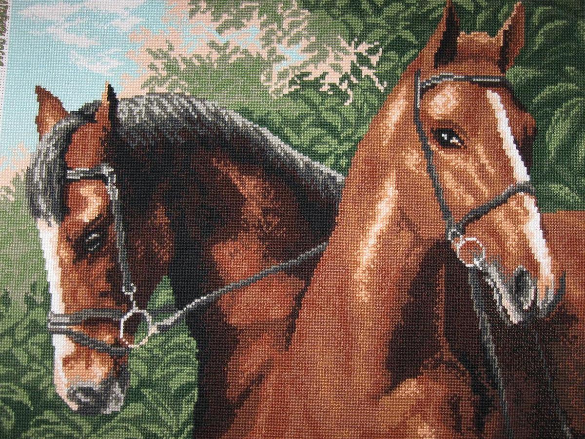 Канва с рисунком Матренин Посад Пара лошадей, 33 см х 45 см. 608484101Размер: 33x45 см Рисунок полностью напечатан на канве. Указана цветовая карта ниток. Вышивать рекомендуется мулине в 3 сложения.