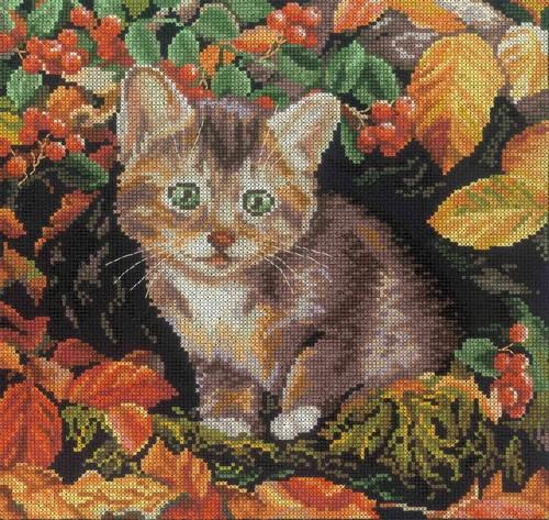 Набор для вышивания RTO Осенний котенок, 25 см х 25 см. M271M271Мулине на карте, разобранное по цветам, канва, символьная схема, игла, инструкция