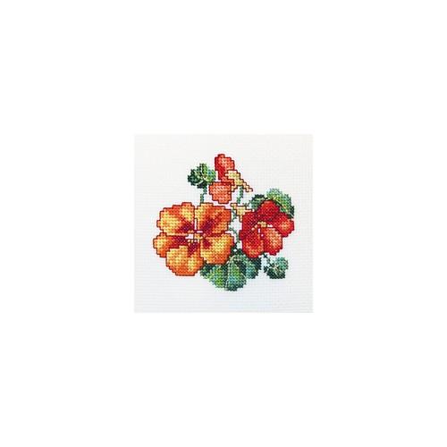 Набор для вышивания RTO Настурция, 10 см х 10 см. H244H244Мулине, канва, символьная схема, игла, инструкция
