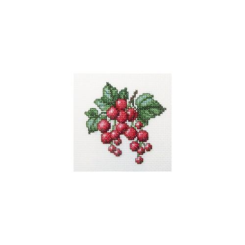 Набор для вышивания RTO Красная смородина, 10 см х 10 см. H252H252Мулине, канва, символьная схема, игла, инструкция