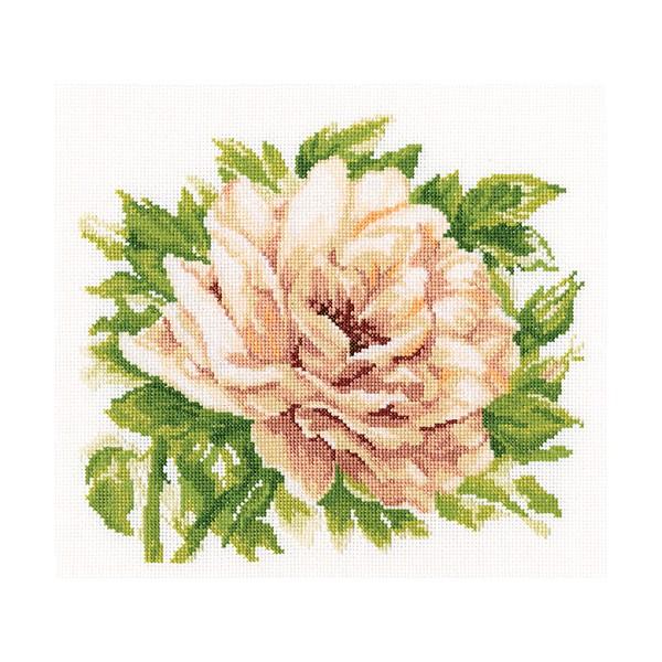 Набор для вышивания RTO Английская роза, 28 см х 26 см. M370M370Мулине на карте, разобранное по цветам, канва, символьная схема, игла, инструкция