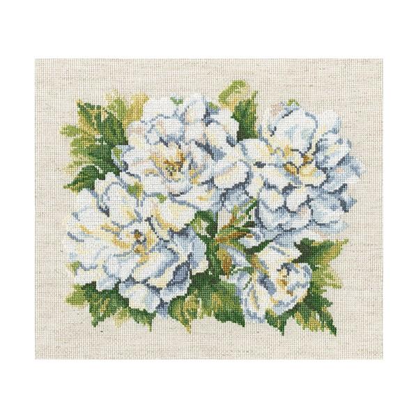 Набор для вышивания RTO Садовые розы, 23 см х 23 см. M373M373Мулине на карте, разобранное по цветам, канва, символьная схема, игла, инструкция